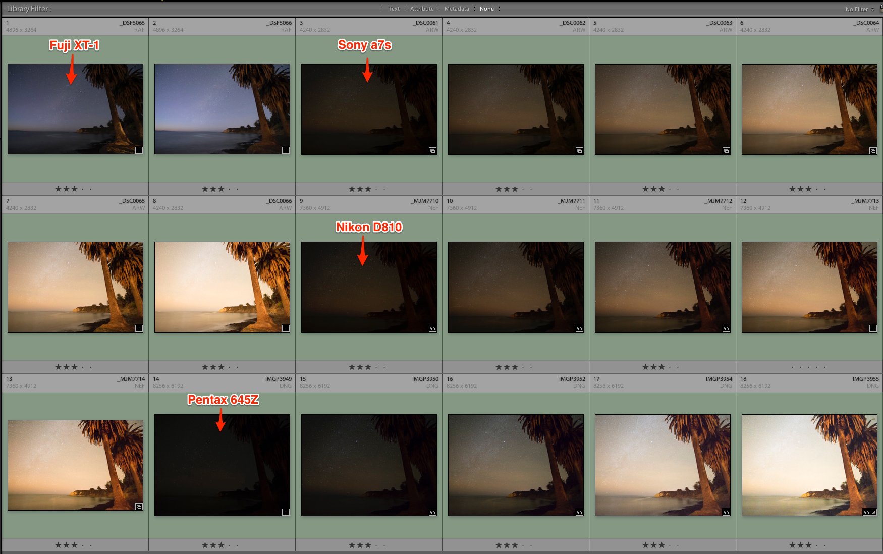"""*Notice the  Fuji  files (the first two, top left).I give Fuji a """"10"""" for accurate """"in camera"""" AWB/auto white balance.  THIS IS VERY INTERESTING, CONSIDERING FUJI'S PAST OF FILM MAKING!Of course you can obtain proper white balance in post production, with all the other camera files, but having WB this close """"in camera"""" sure is nice."""