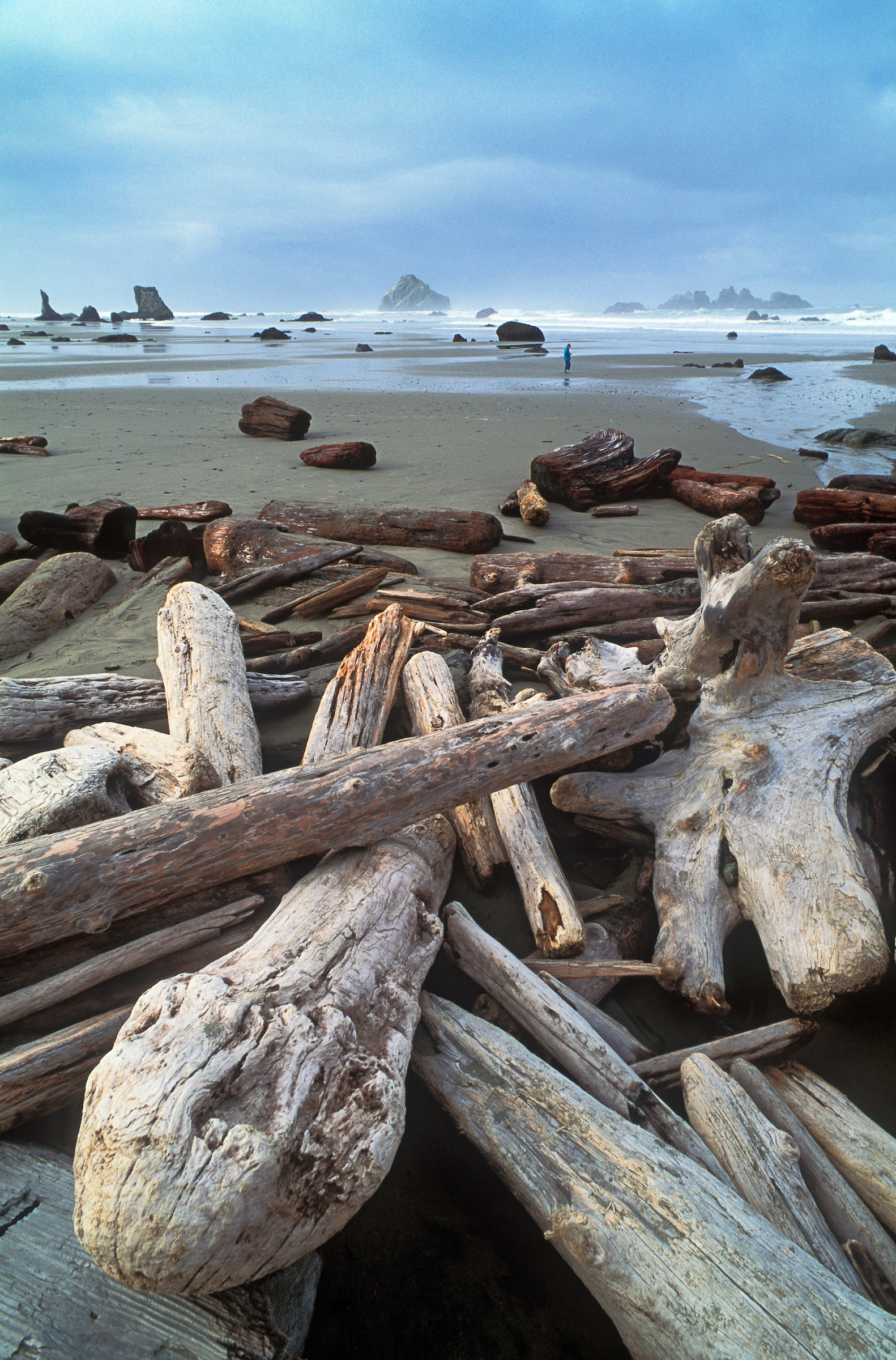 muench-workshops-Bandon-Beach-Oregon-coast-1.jpg