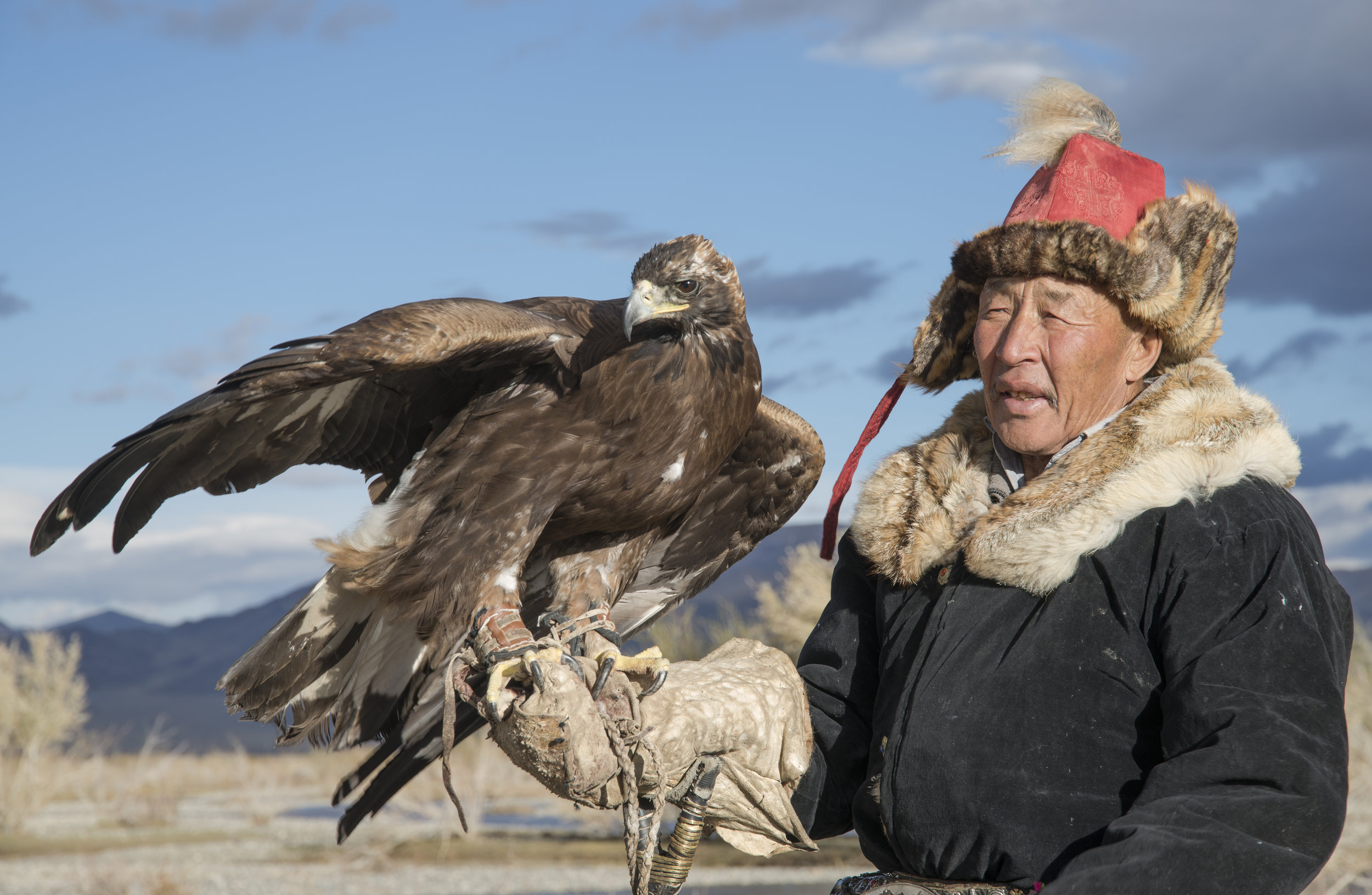 sultainbai and eagle.jpg