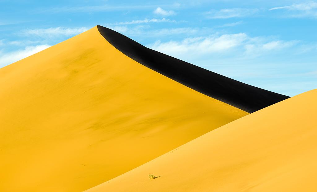muench-workshops-ibex-dunes.jpg