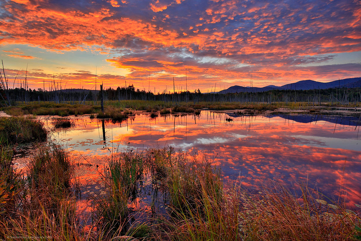 Shaw-Pond-brilliant-red-sunrise-Sept-2015_1250px (1).jpg