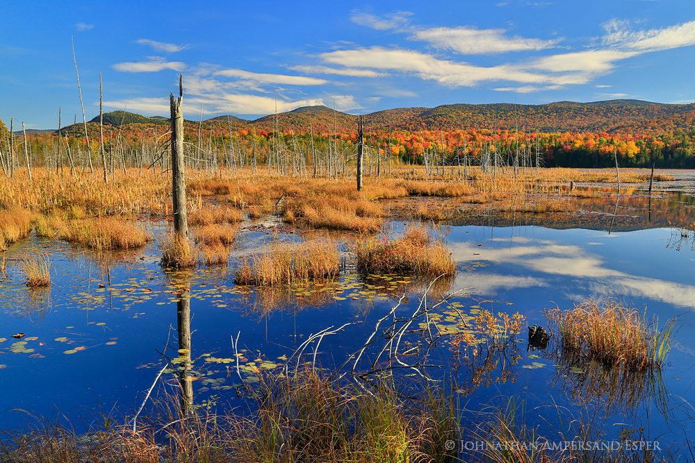 Shaw-Pond-Long-Lake-fall-2014_1000px (1).jpg