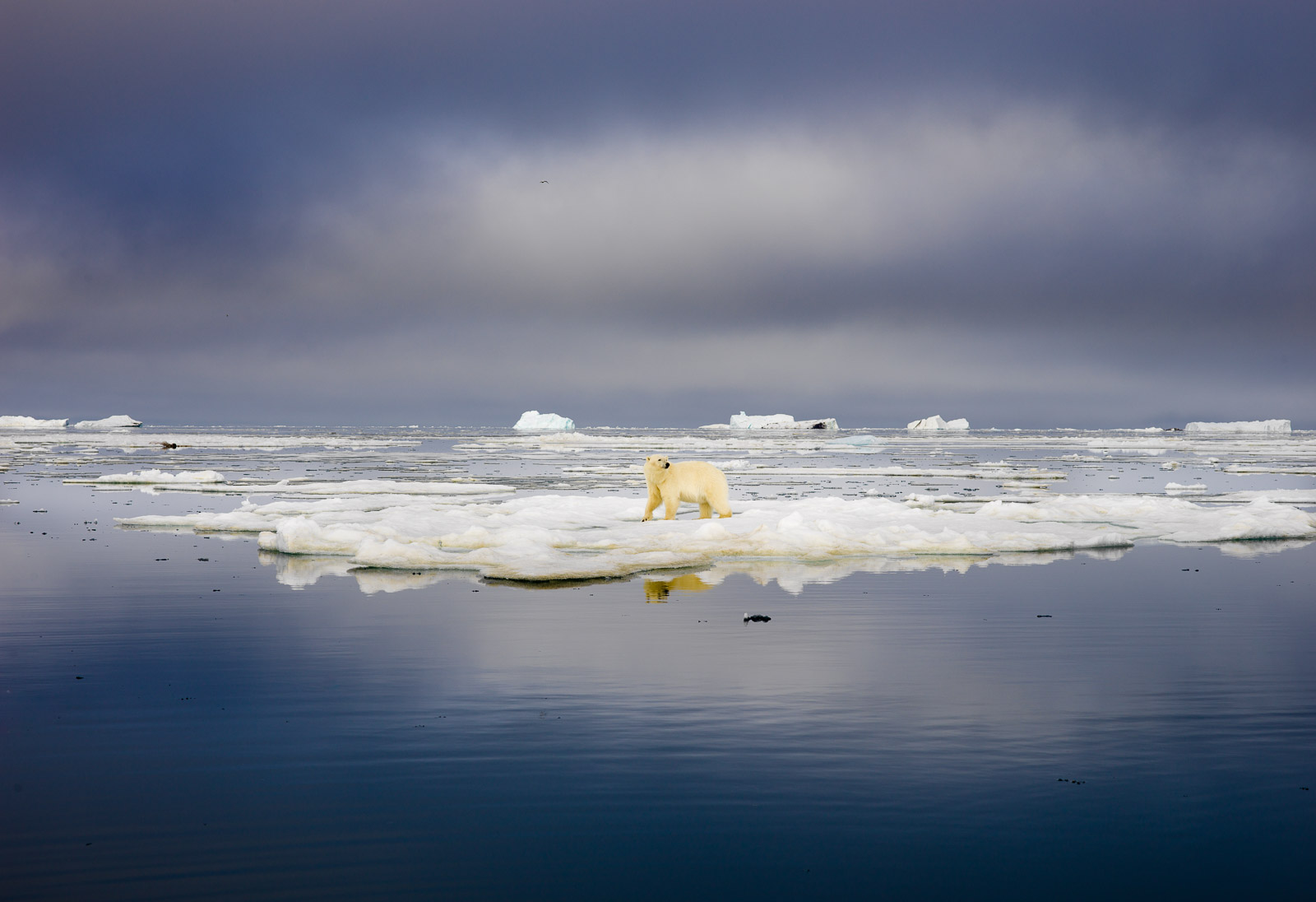 photo-workshop-svalbard-photo-expedition-8.jpg