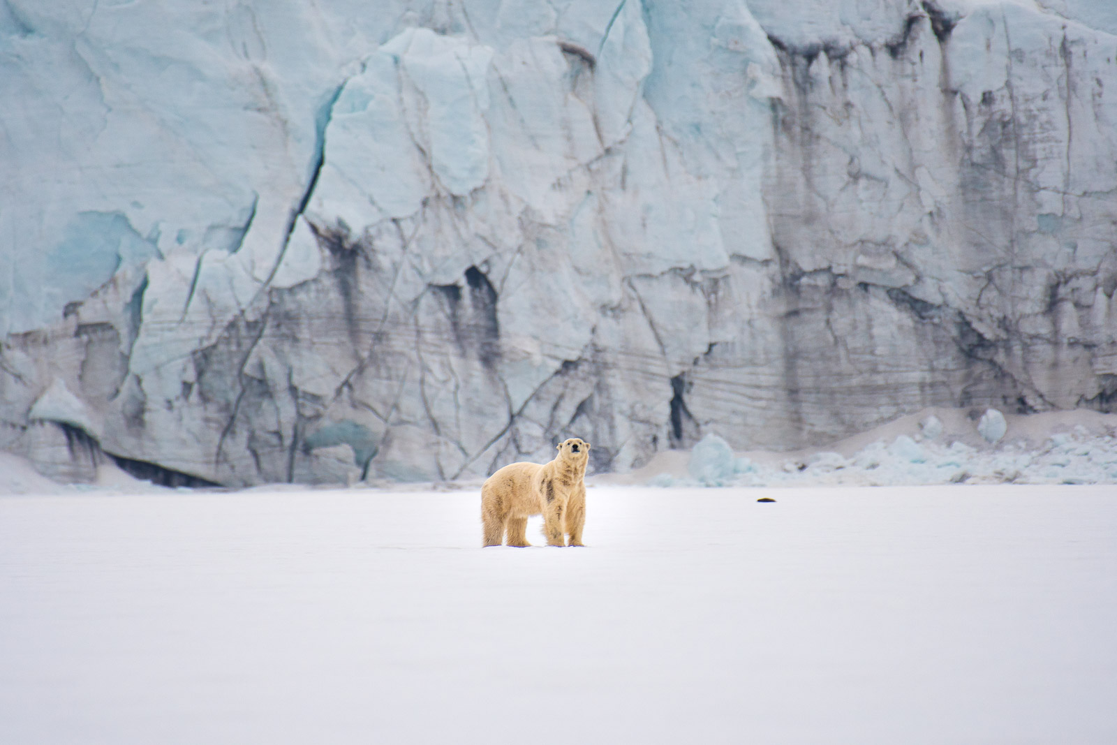 photo-workshop-svalbard-photo-expedition-2.jpg