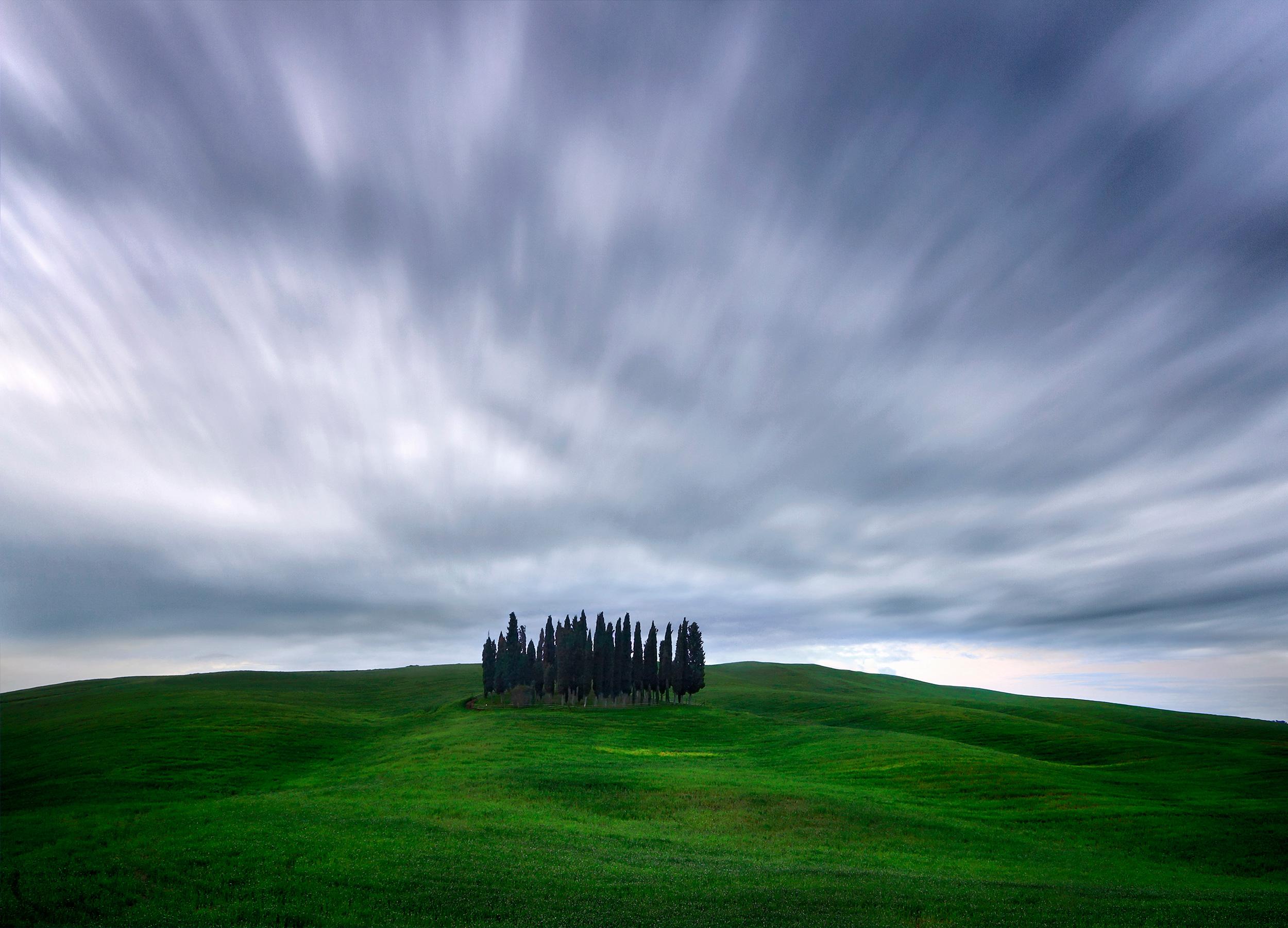 Cypress trees of San Quirico d'Orcia - Valdorcia, Tuscany, Italy