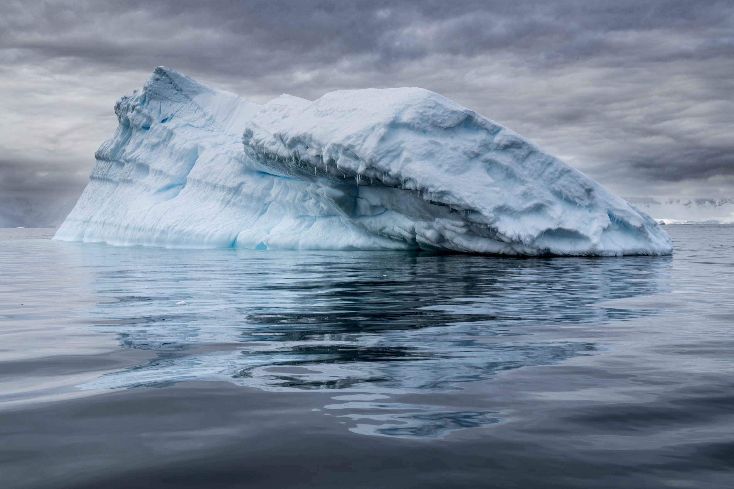 antarctica-photo-workshop.jpg