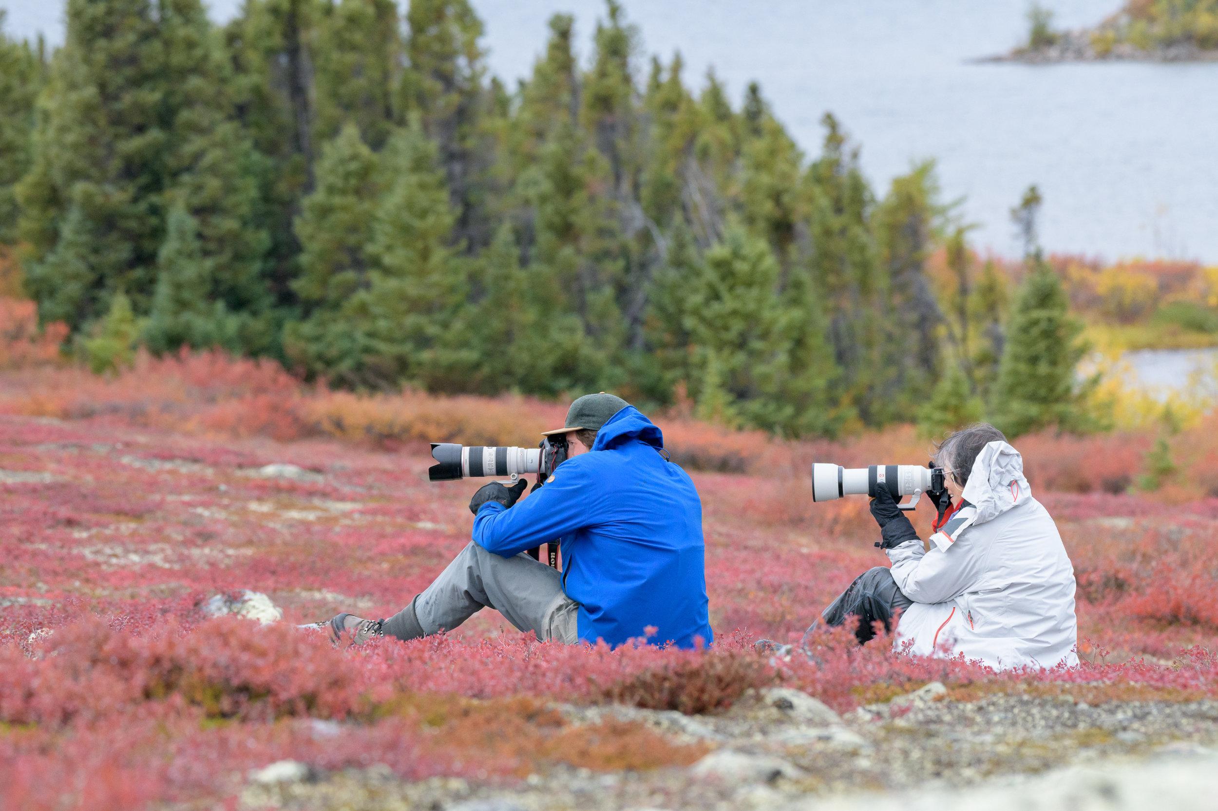 photo_workshop_canadian_arctic-15.jpg