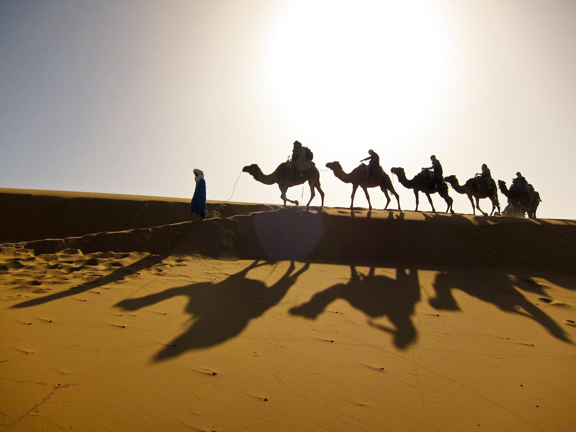 Sahara-IMG_3779-Zack-Woolwine.jpg