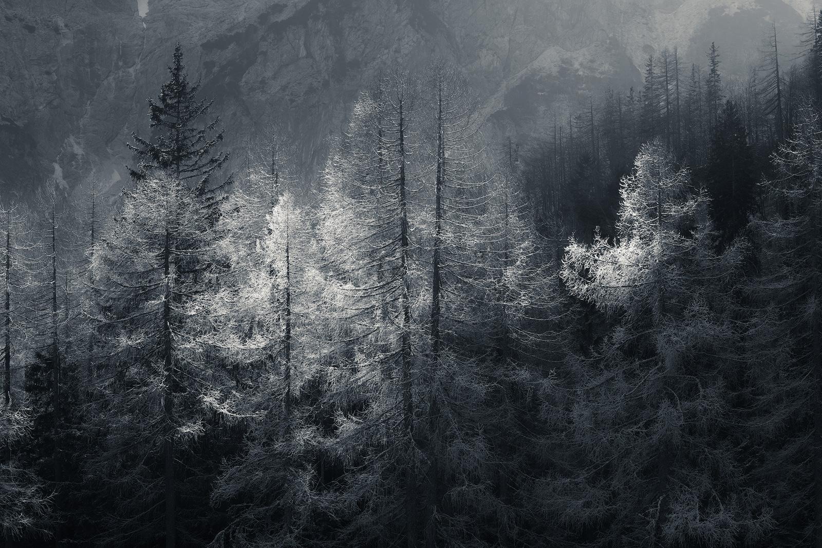 slovenia_winter_esenko_007.jpg