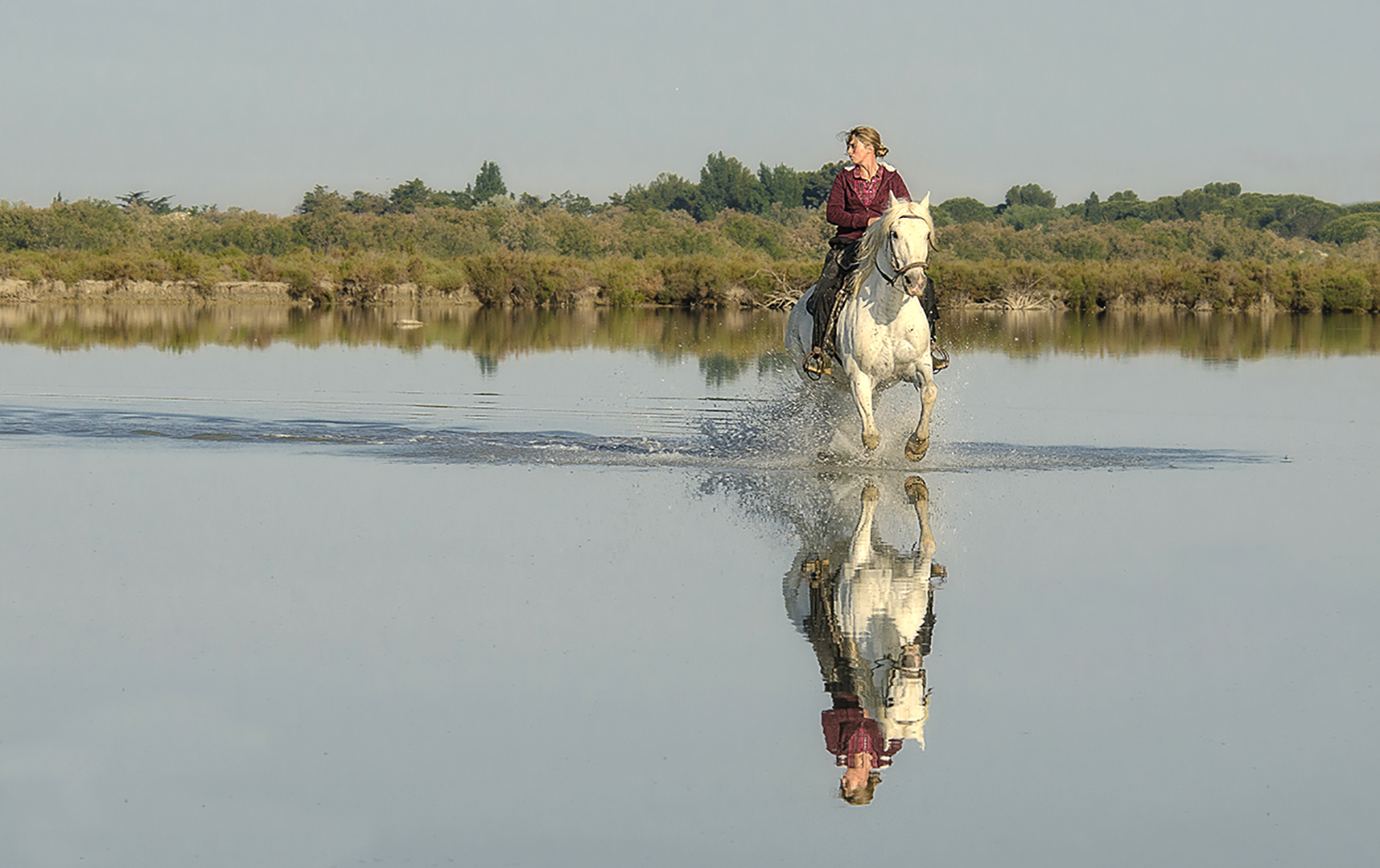 a run in the water.jpg