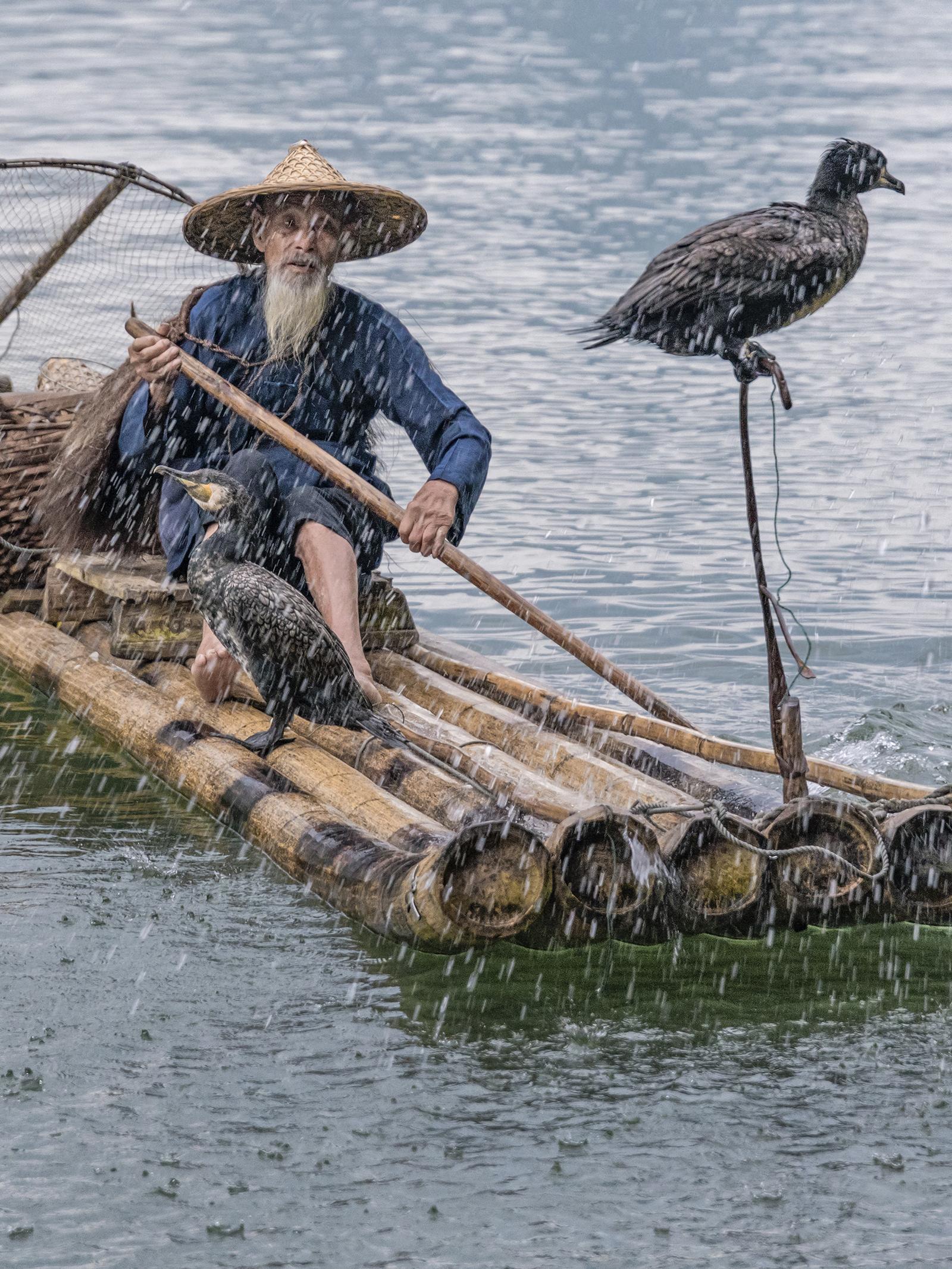 cormorant fisherman in the rain.jpg