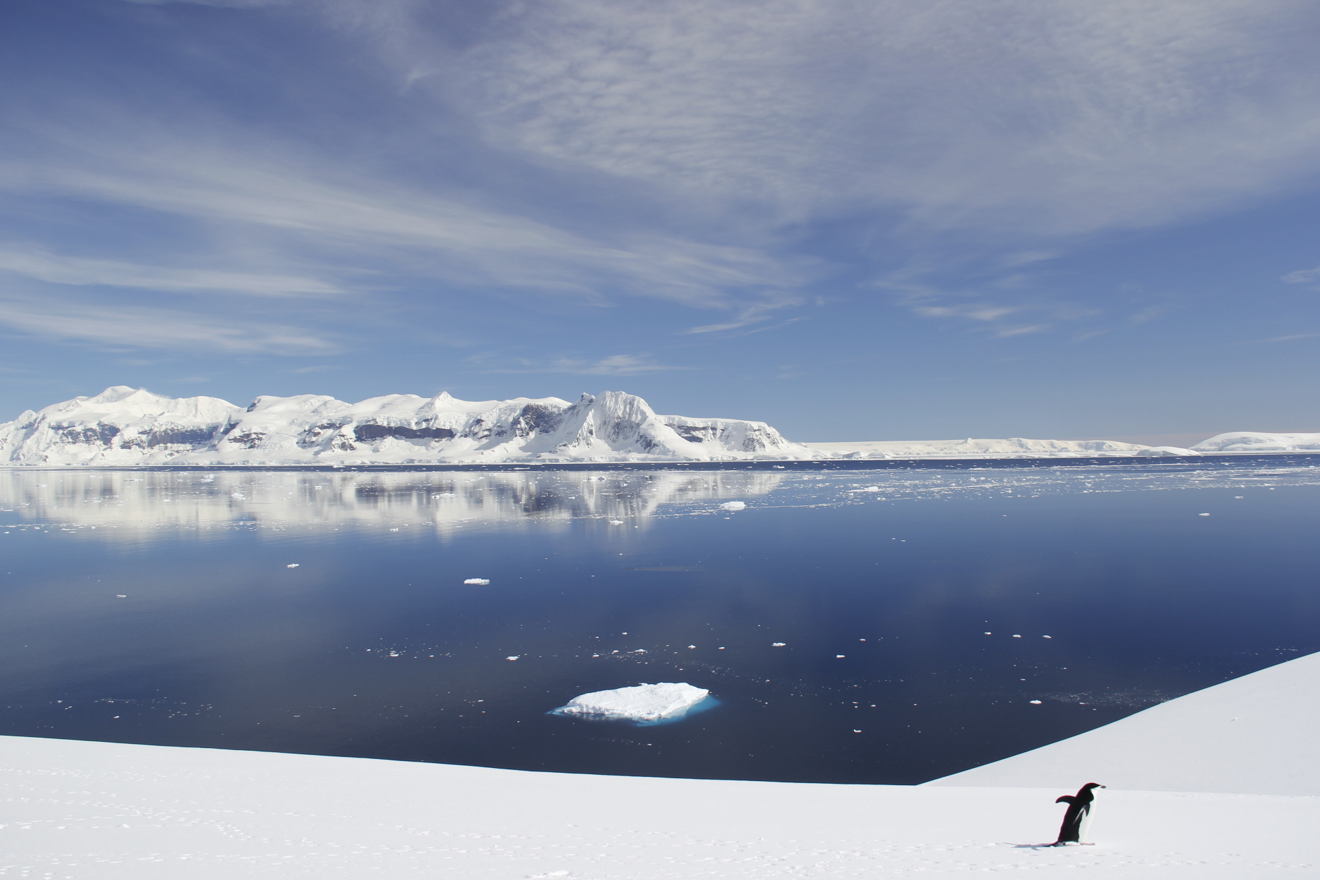 muench-workshops-south-georgia-antarctica-falklands-A241016_MG_4320.JPG