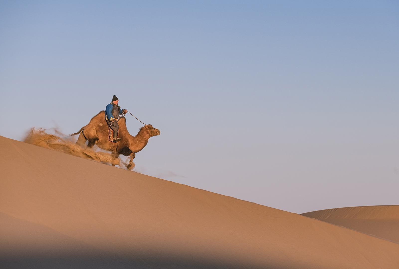 camel herder on dune.jpg