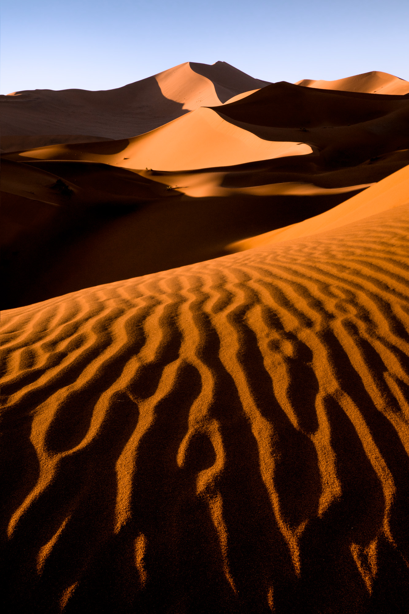 Sossus Dunes