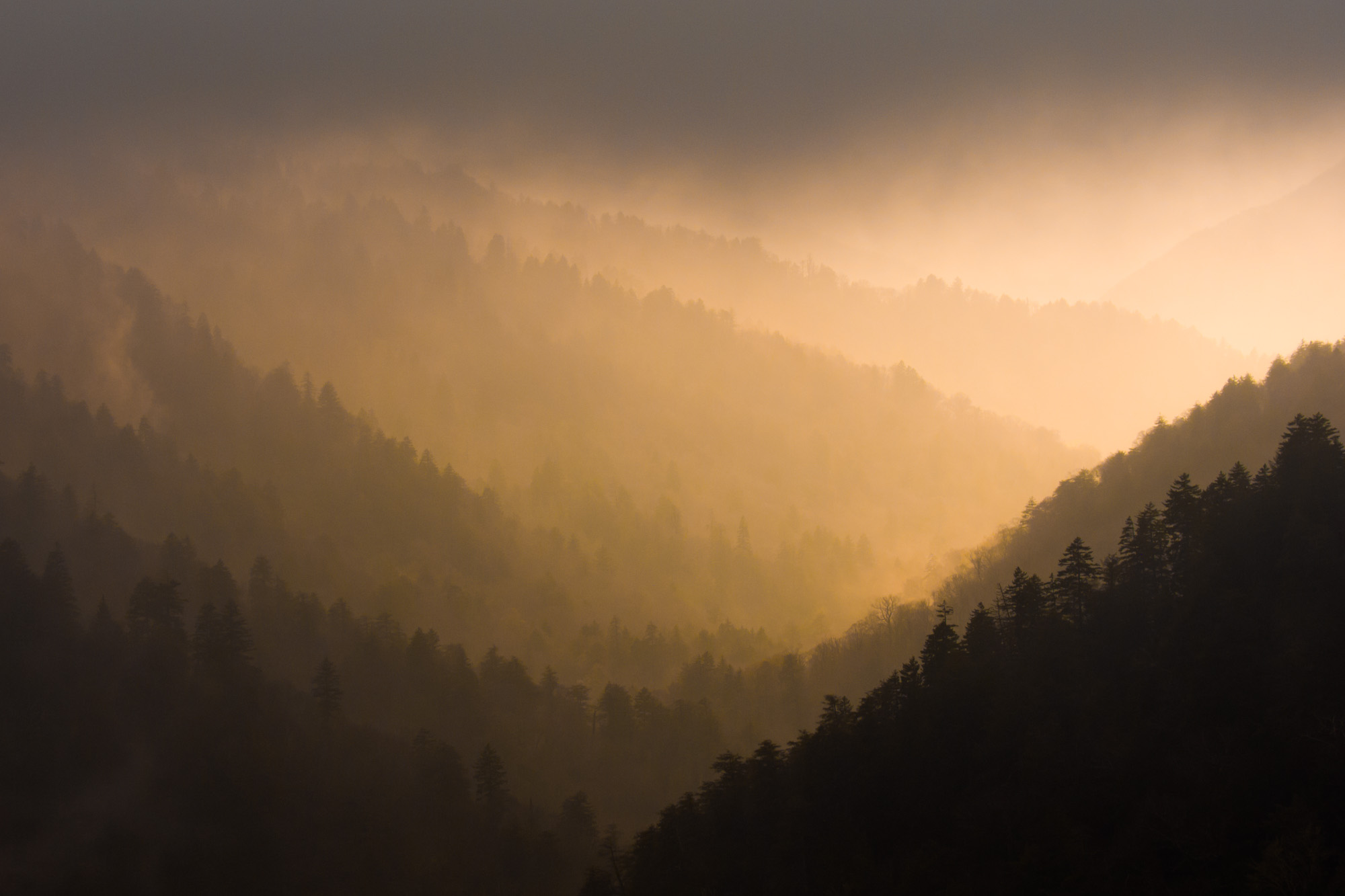Misty Mountain Ridges, Great Smoky Mountains National Park, Tennessee/North Carolina