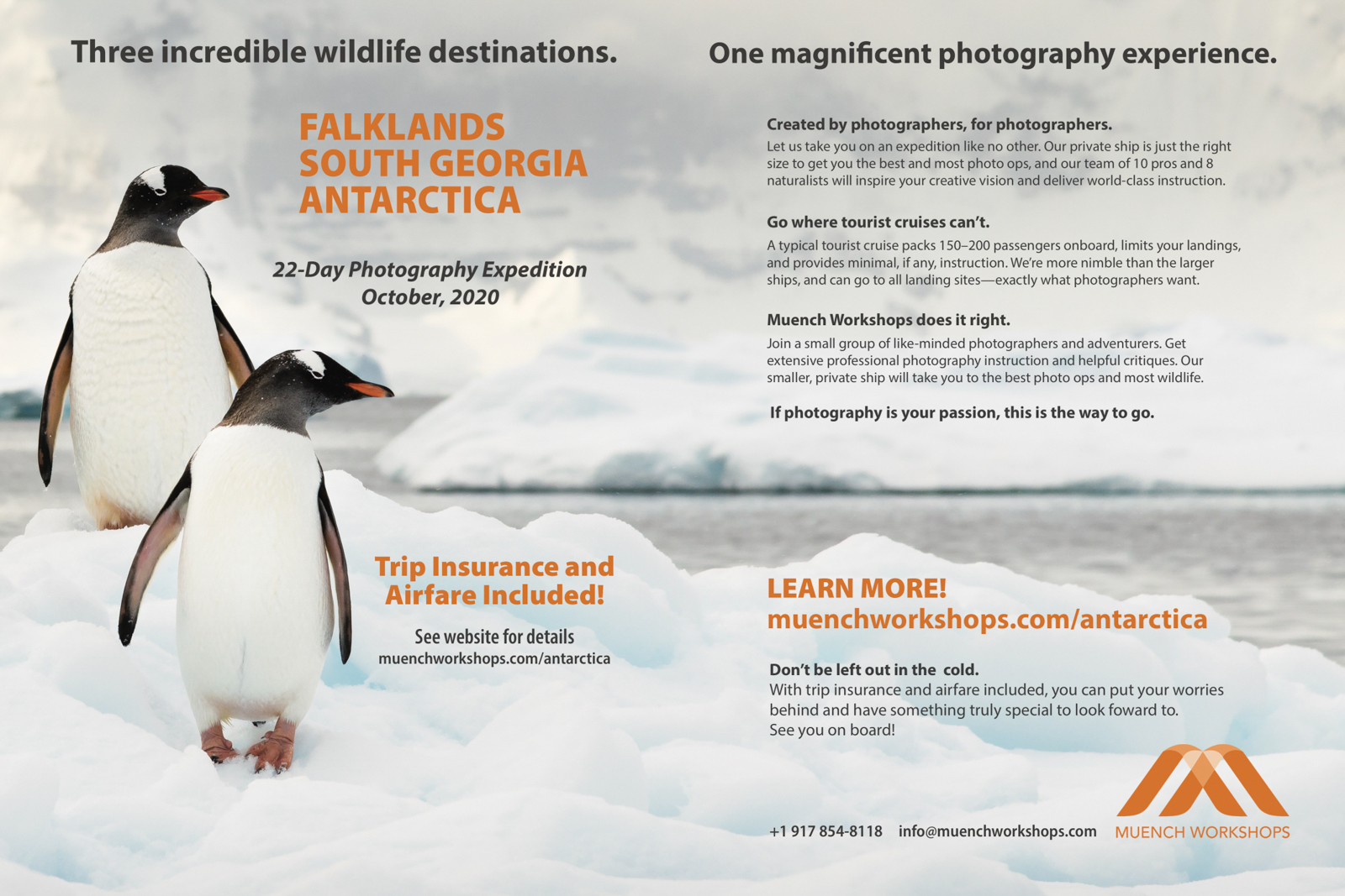 south georgia falklands antarctica photo expedition.jpg