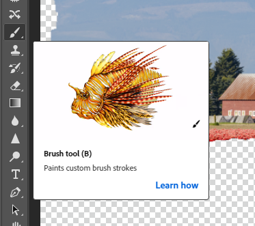 Activate the Brush tool in Photoshop.