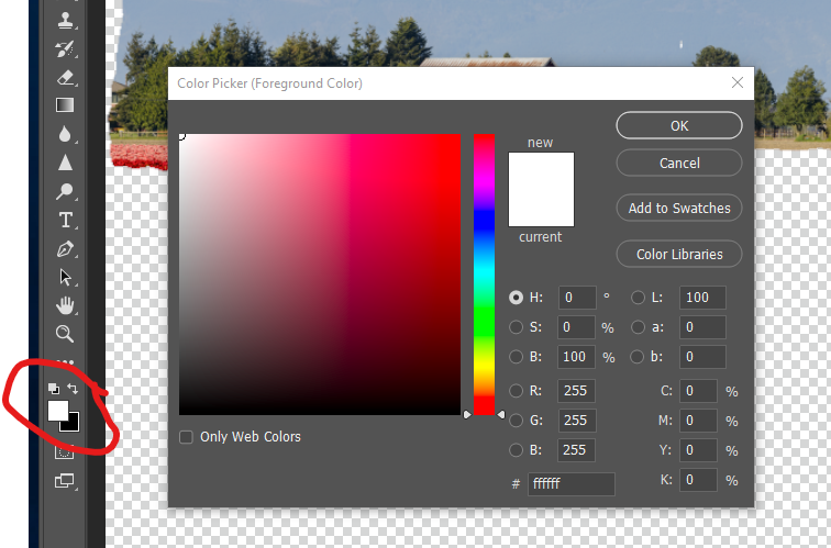 Toggle the color of the Brush tool between black (to hide) and white (to reveal) layer contents.