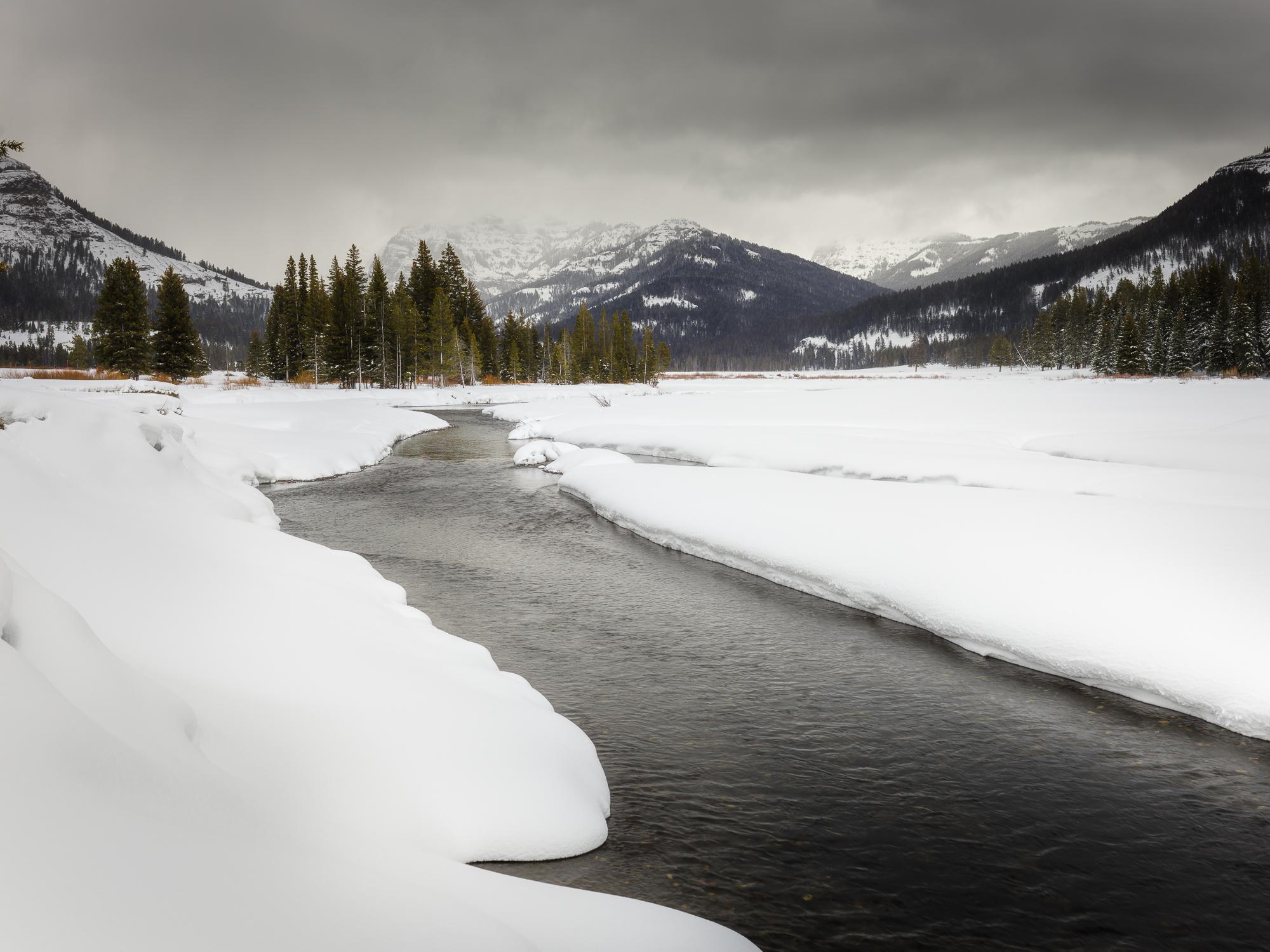 Yellowstone-0006872.jpg