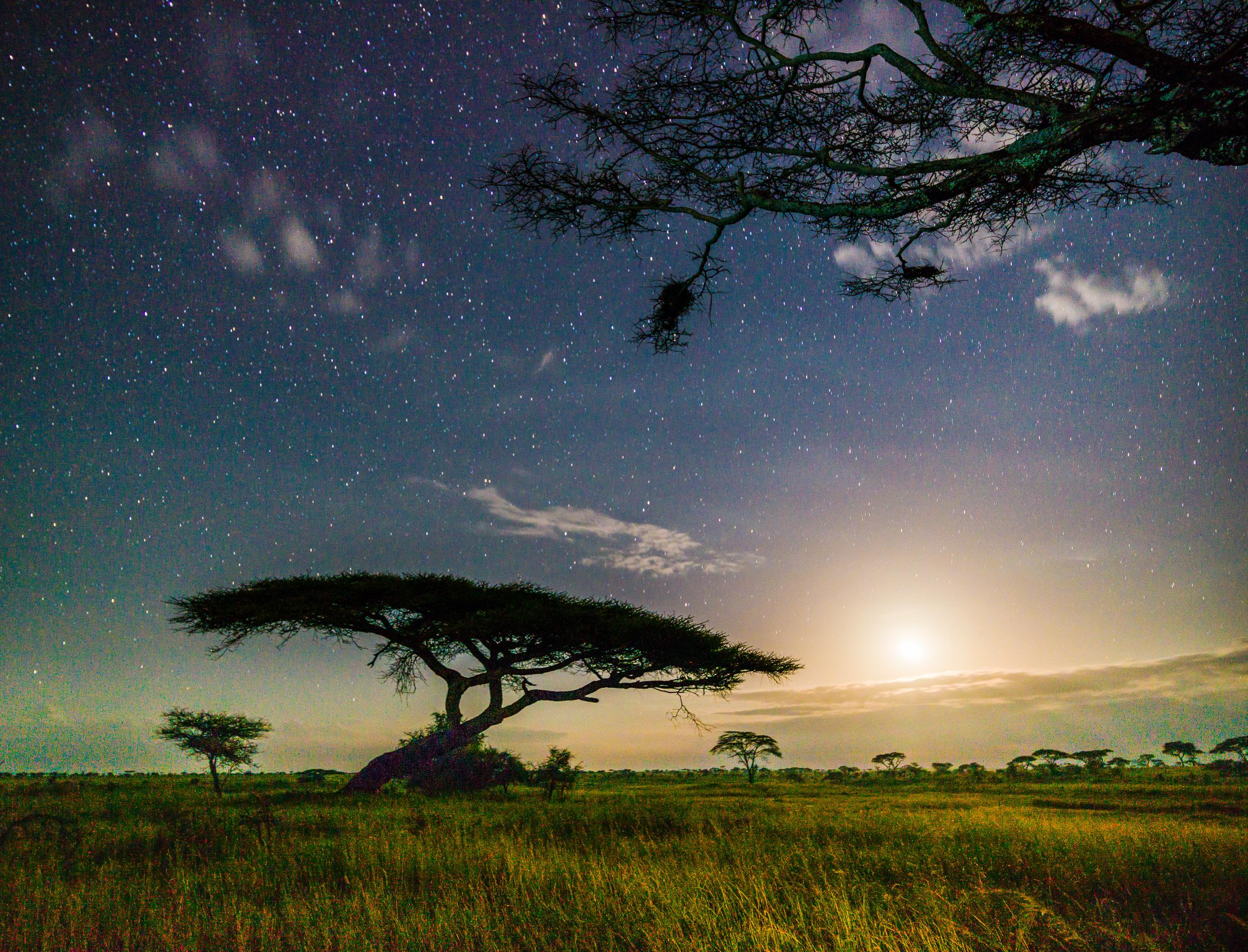 Tanzania-0000604.jpg