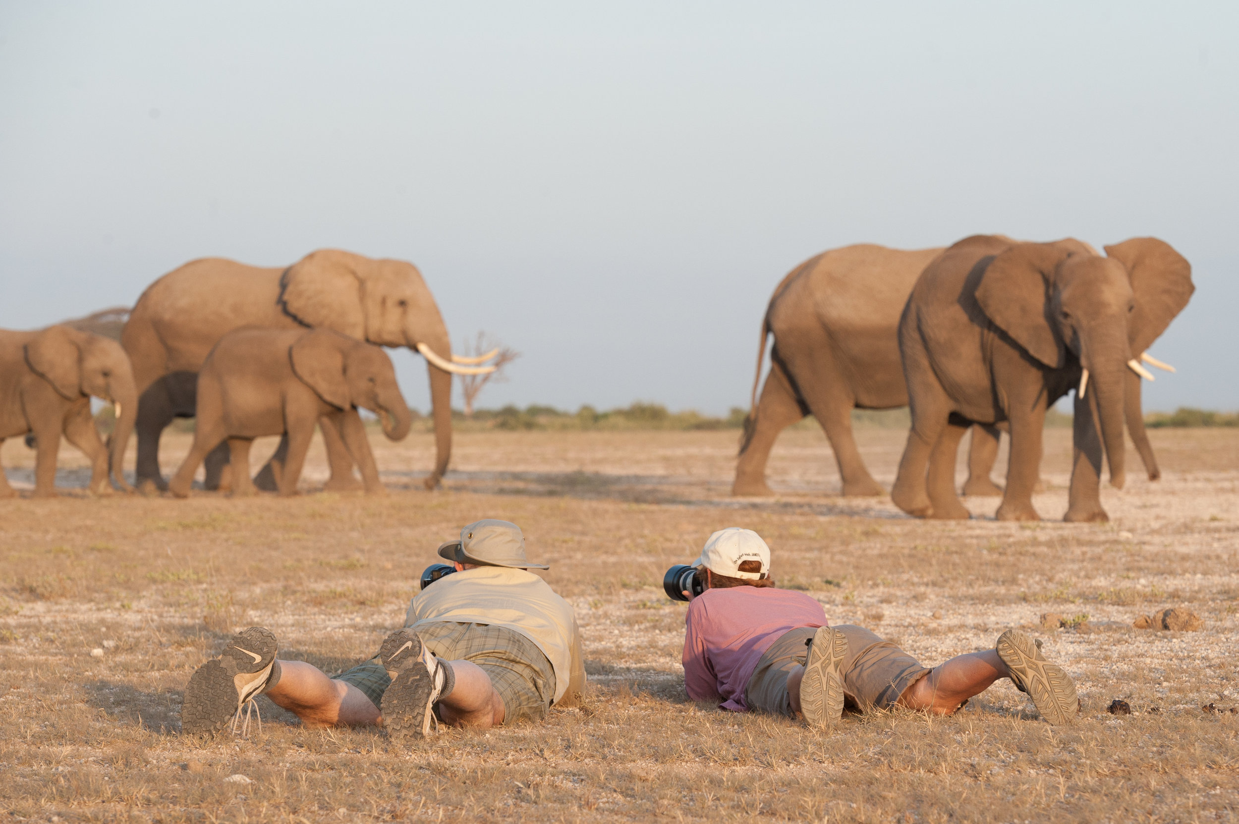 muench-workshops-safari.jpg