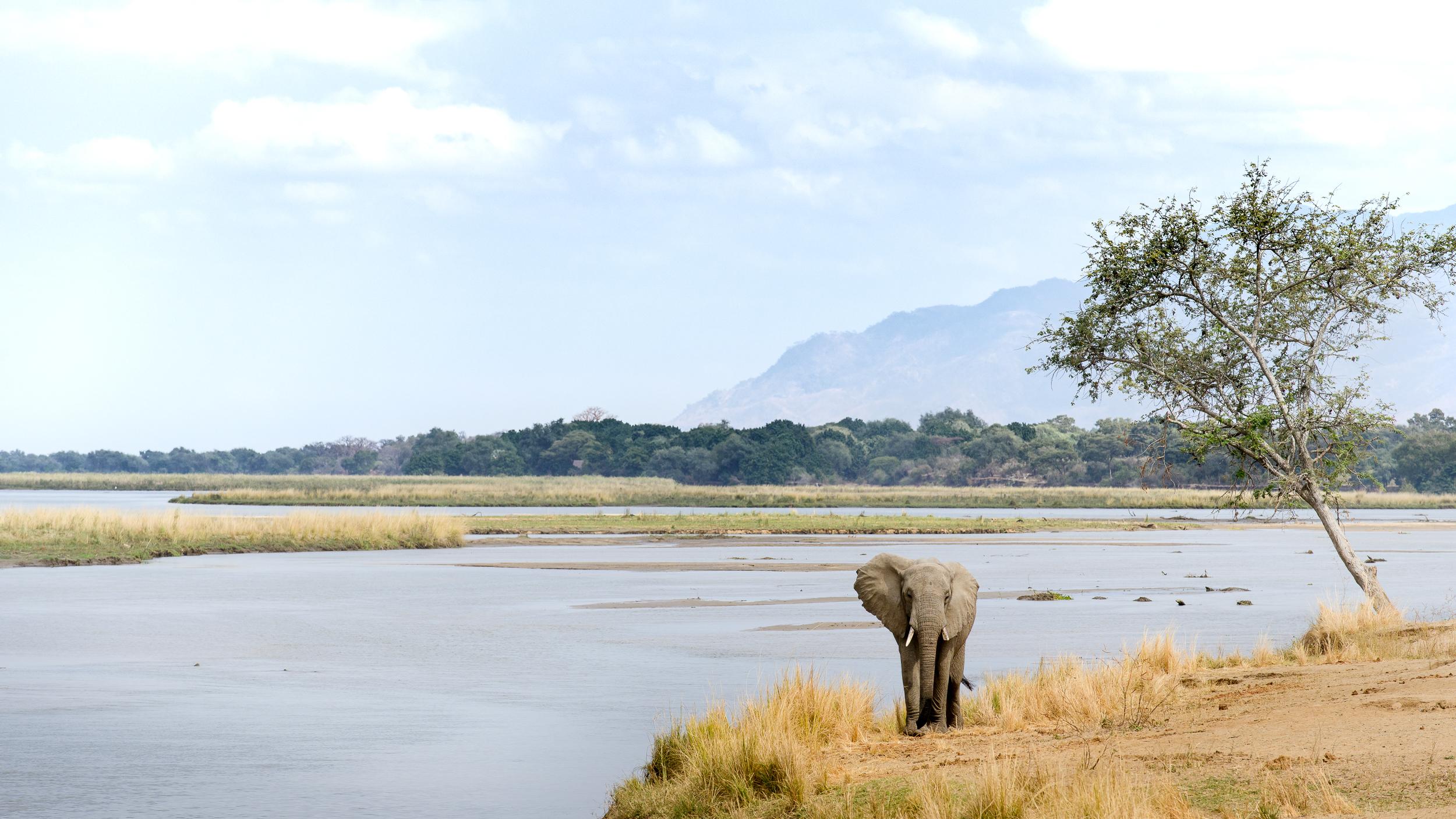 Zambia-2243.jpg