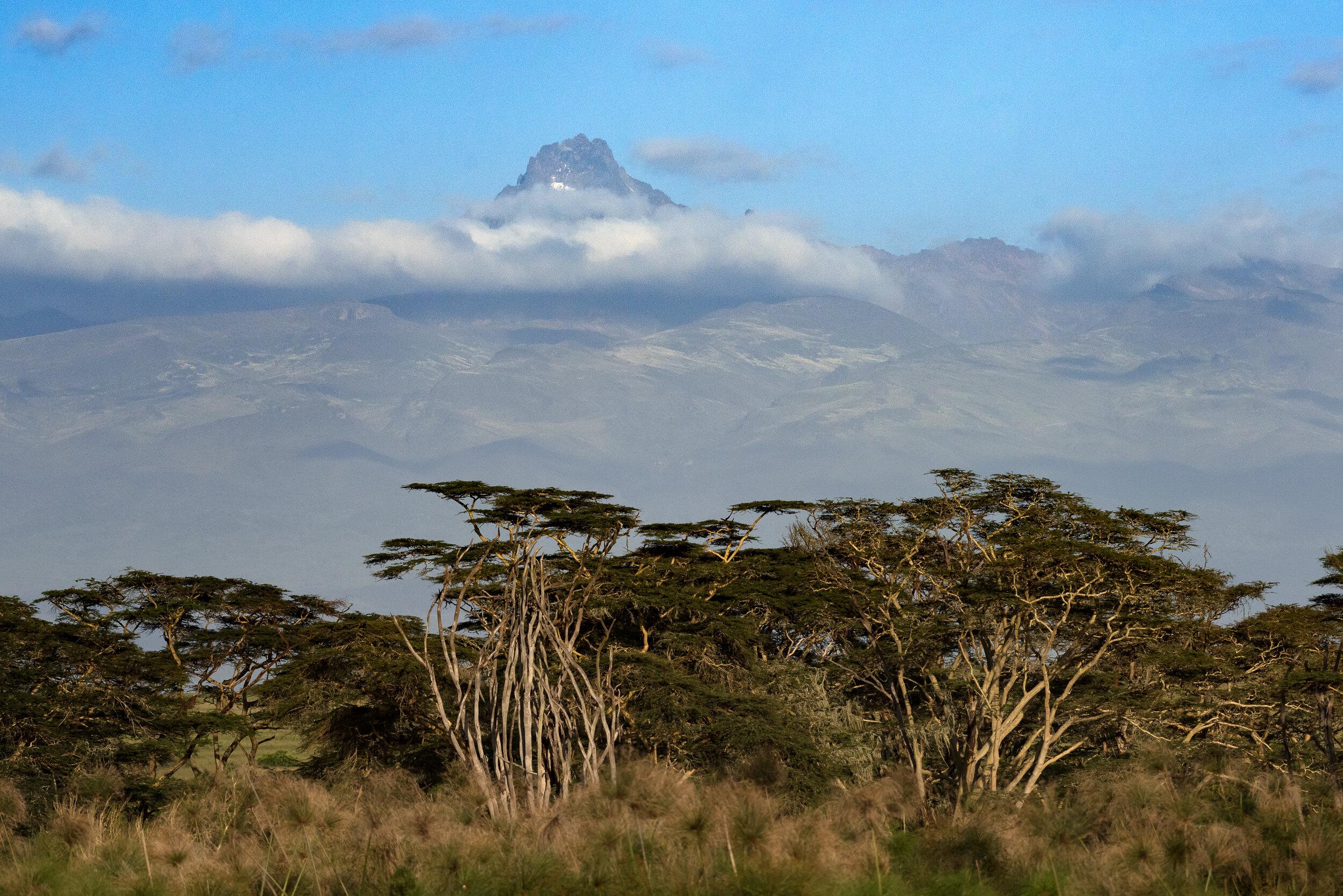 Kenya-9715.jpg