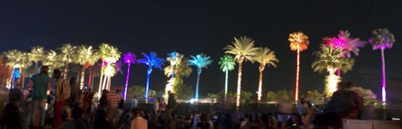 coachella-nighttime-palm trees.jpg