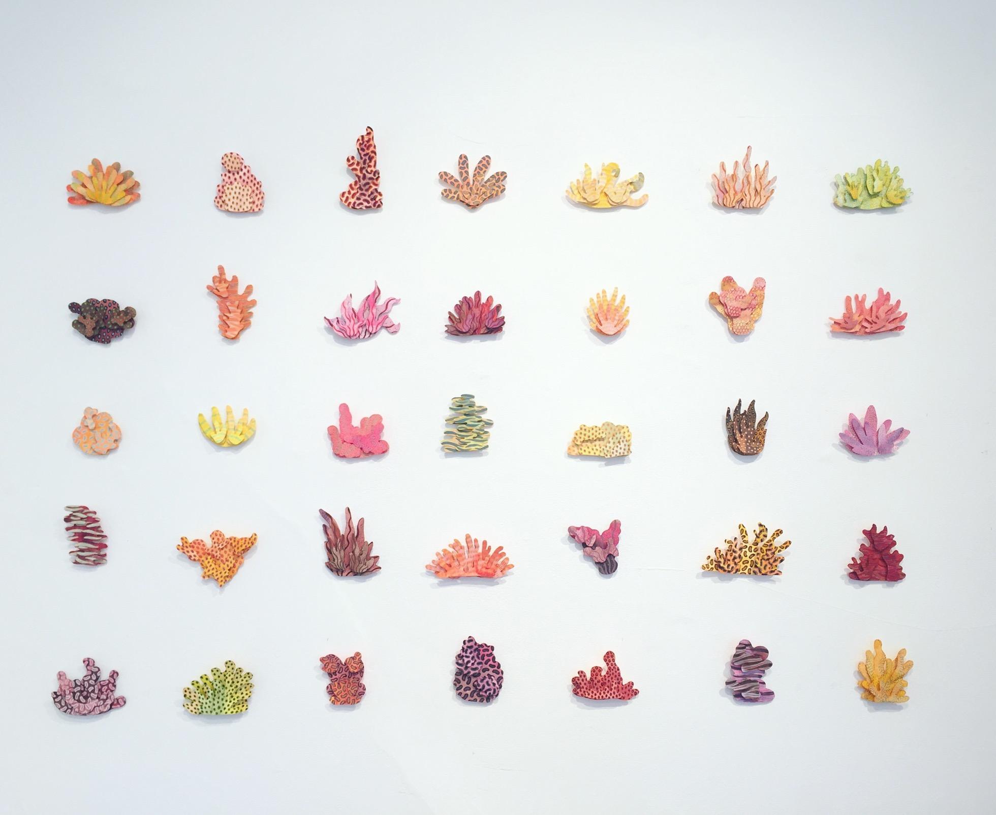 Energy Plants