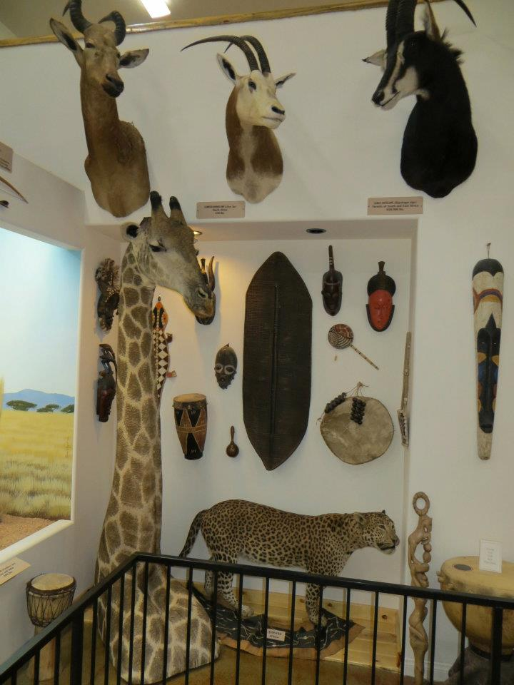 This house of animal horrors included species from all continents.