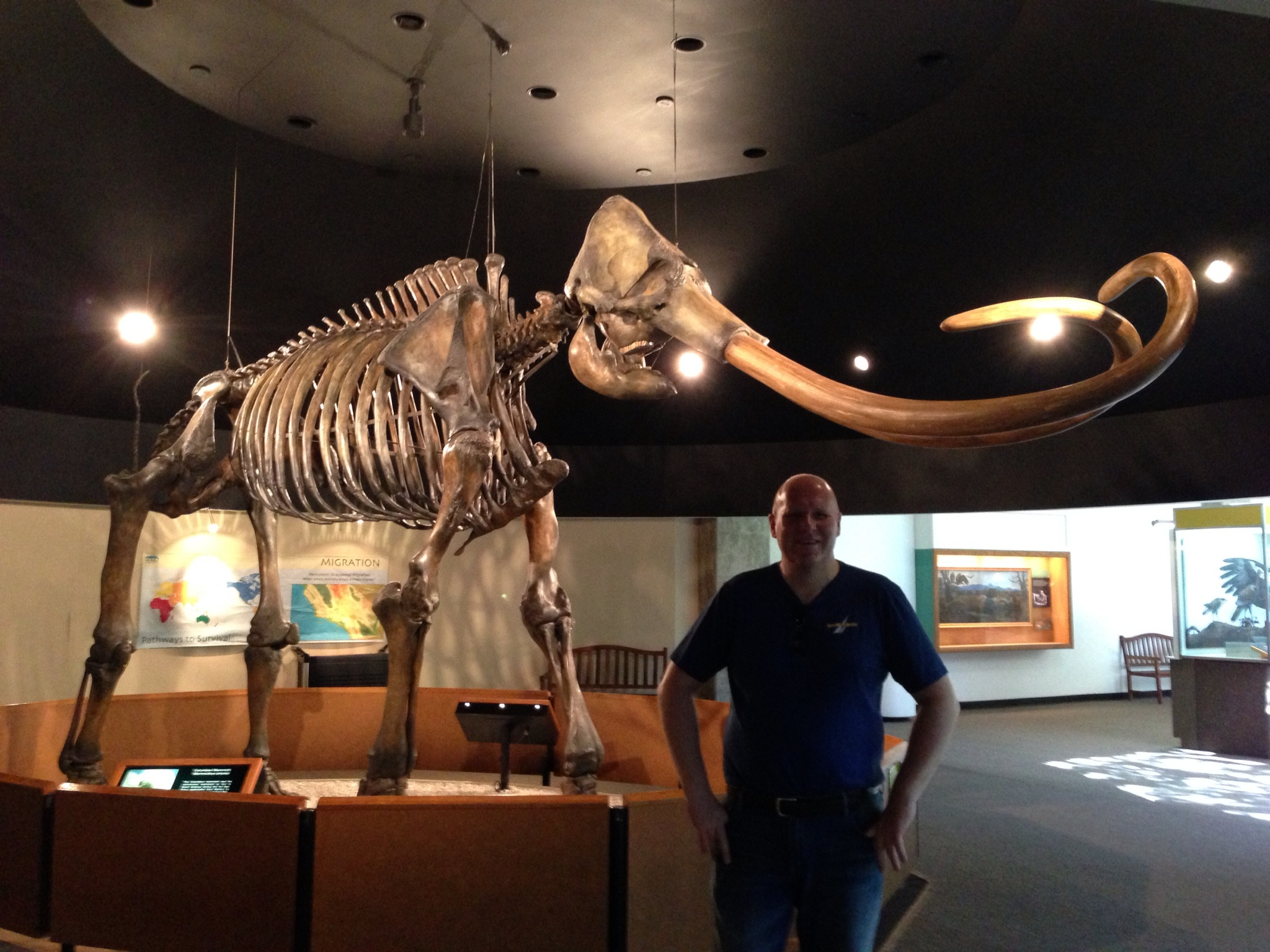 Dan with the absolutely enormous mammoth. It's well..mammoth!