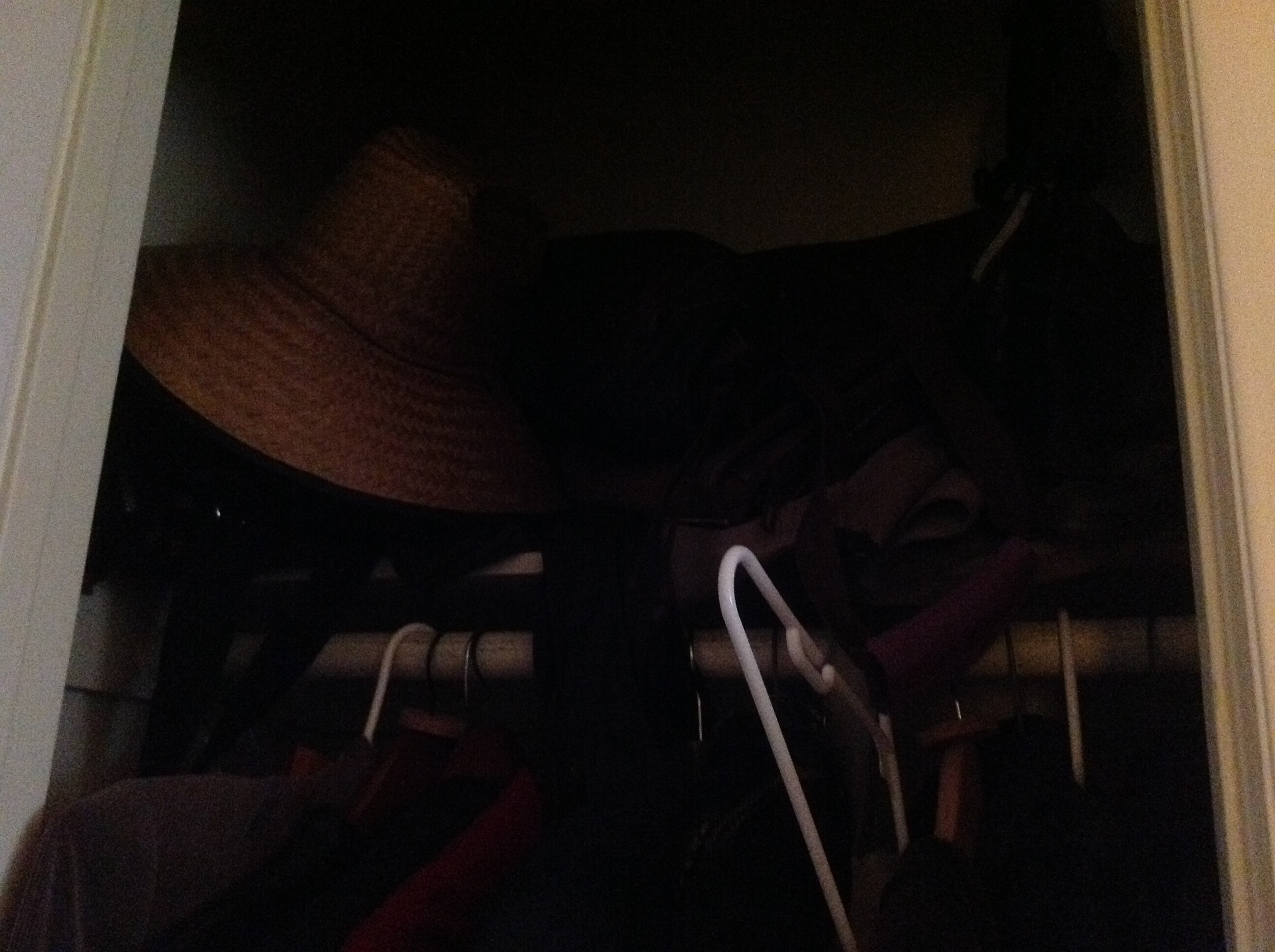 Coat Closet- sorry so dark, it's the best that I could get.