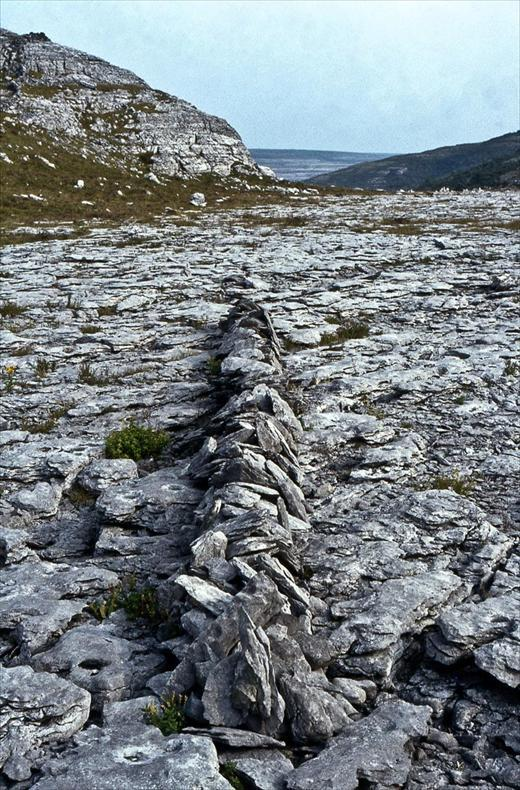 A Line in Ireland