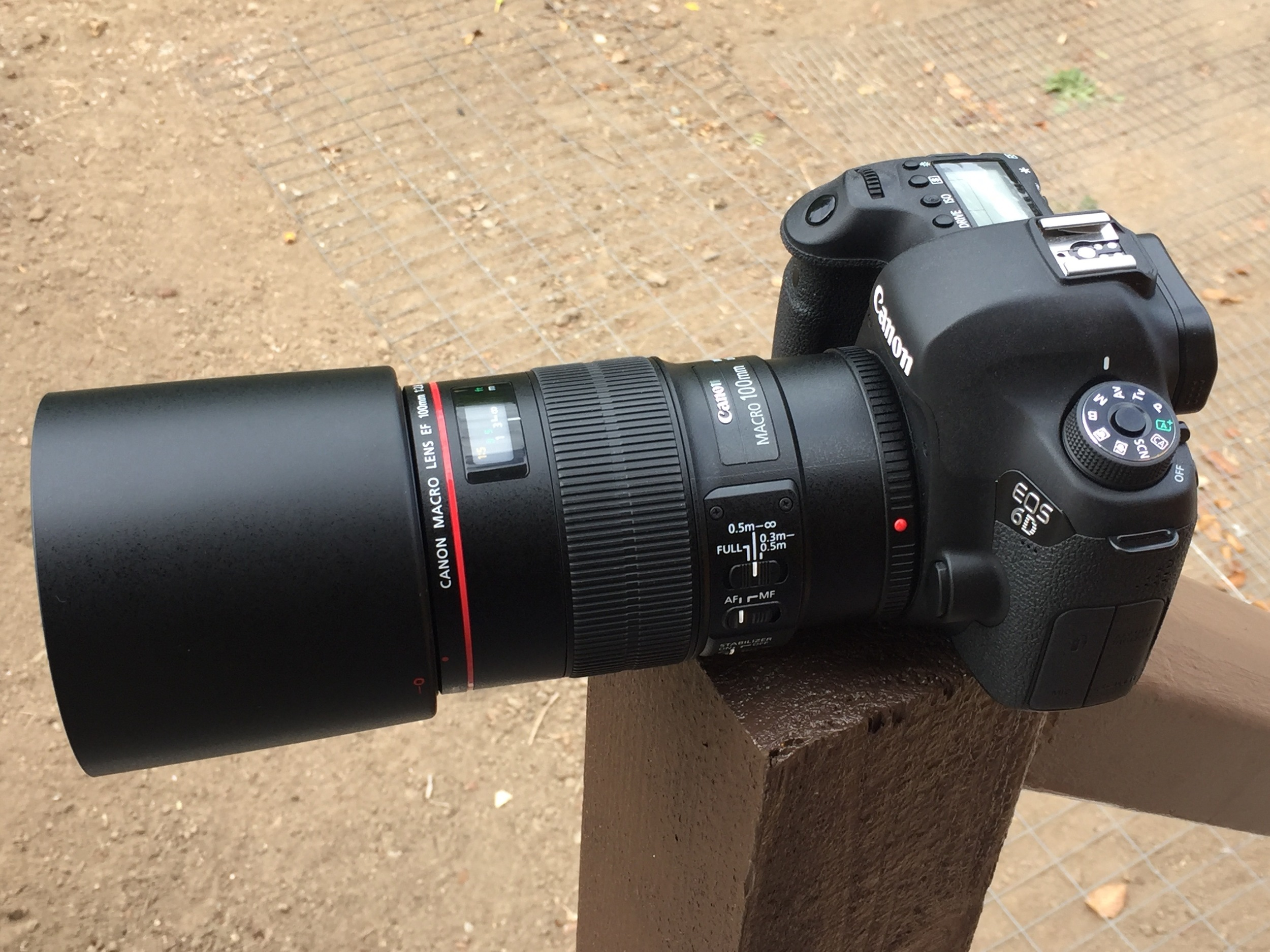 The Canon 100mm F2.8L IS Macro mounted on my 6D. While built of plastic, it feels modern and very well made. It is relatively large compared some shorter and squatter primes like my 50mm F1.4  or 85mm F1.8 but it still balances pretty well and feels great to shoot. The stabilizer seems to work very well. Even if you are shooting with strobes or high shutter speeds, it can be nice to have a stabilizer viewfinder to help with composition. Focus speed is very fast when you have the focus range limiter switch set to the correct setting for your subject. If you aren't shooting at macro distances, its best to keep it focussing from .5m-infinity so it doesn't spend any time hunting for focus at close range.