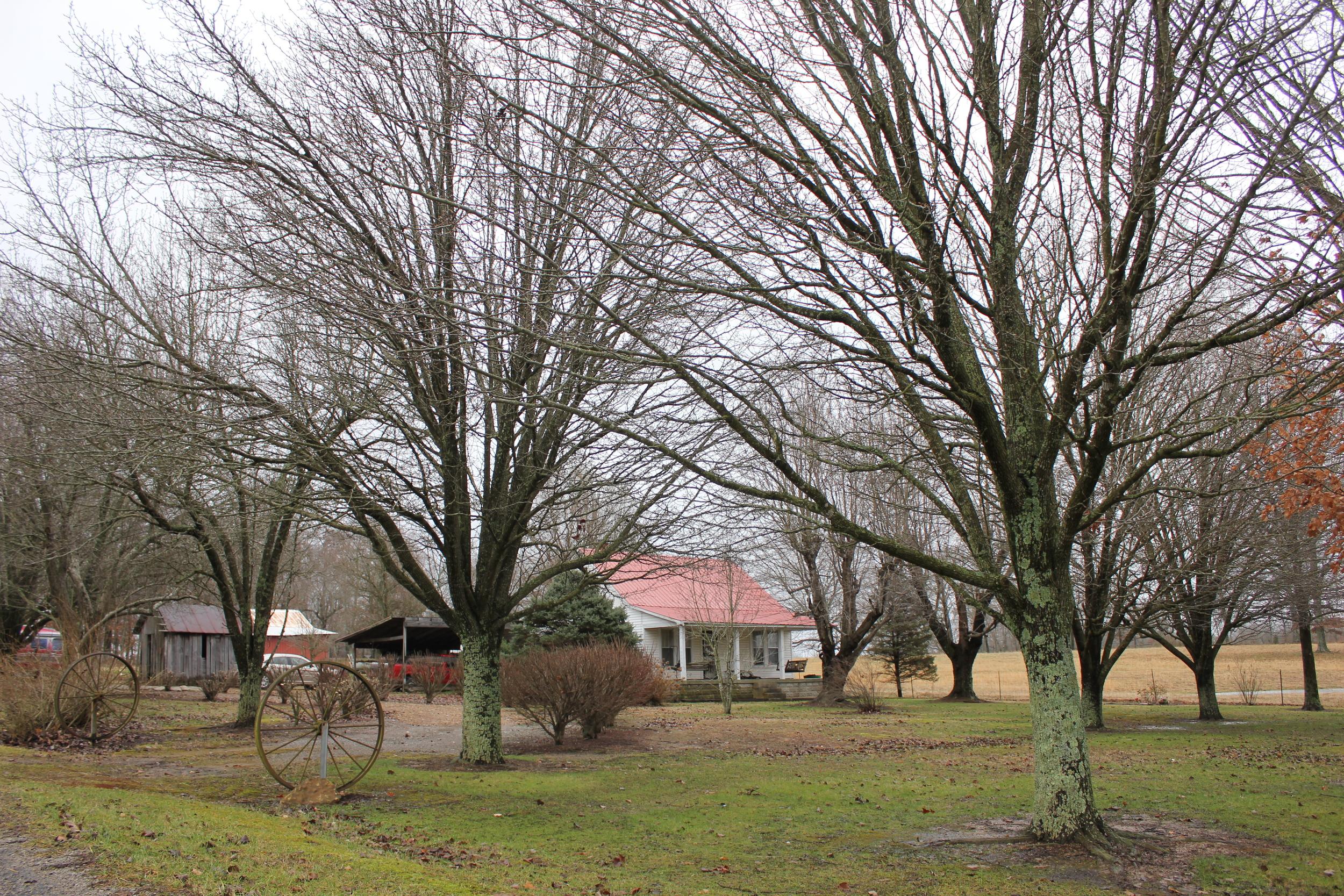 The family farm.