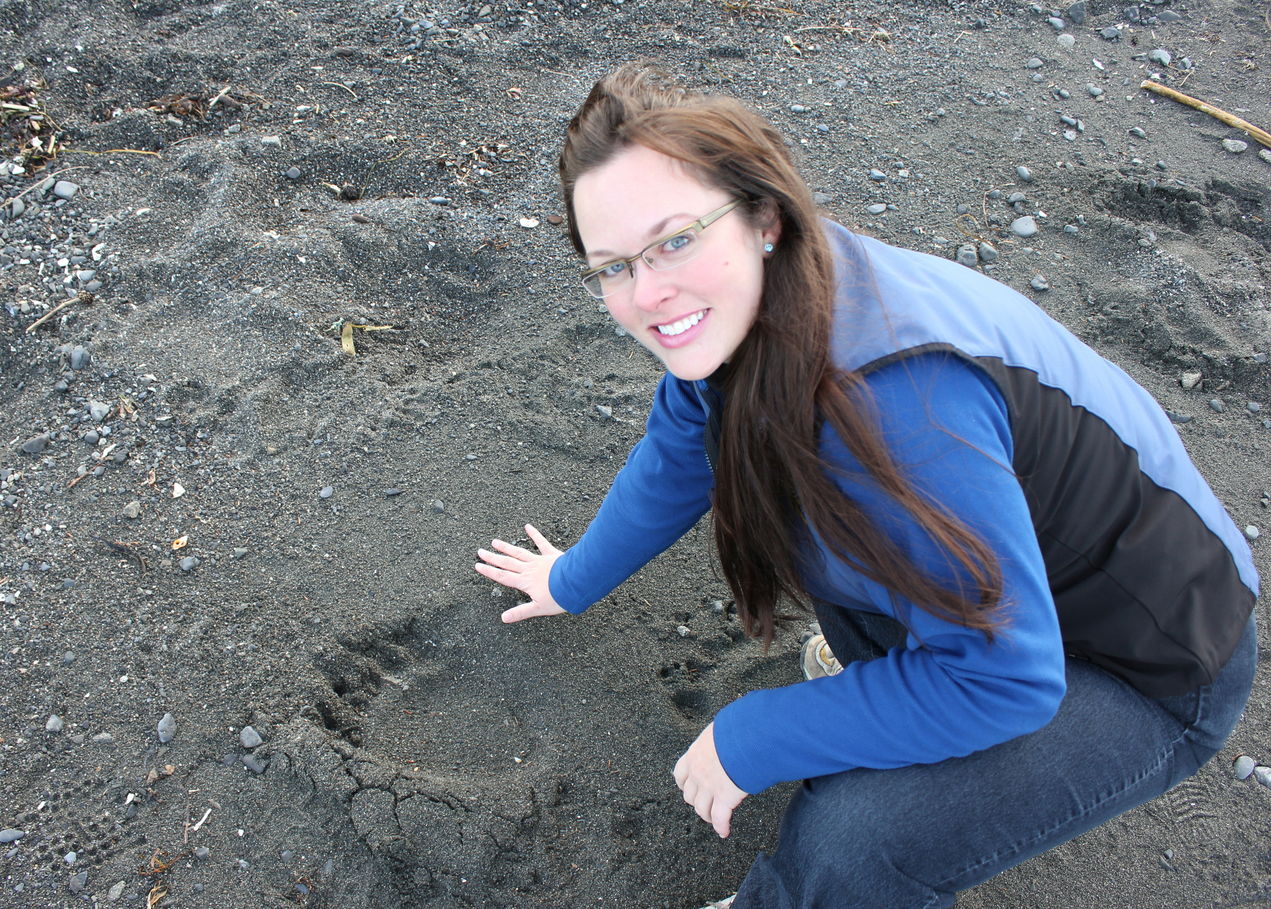 Saw huge bear tracks up and down the beach near the rotting whale, but the majestic Kodiak Brown Bear was elusive.