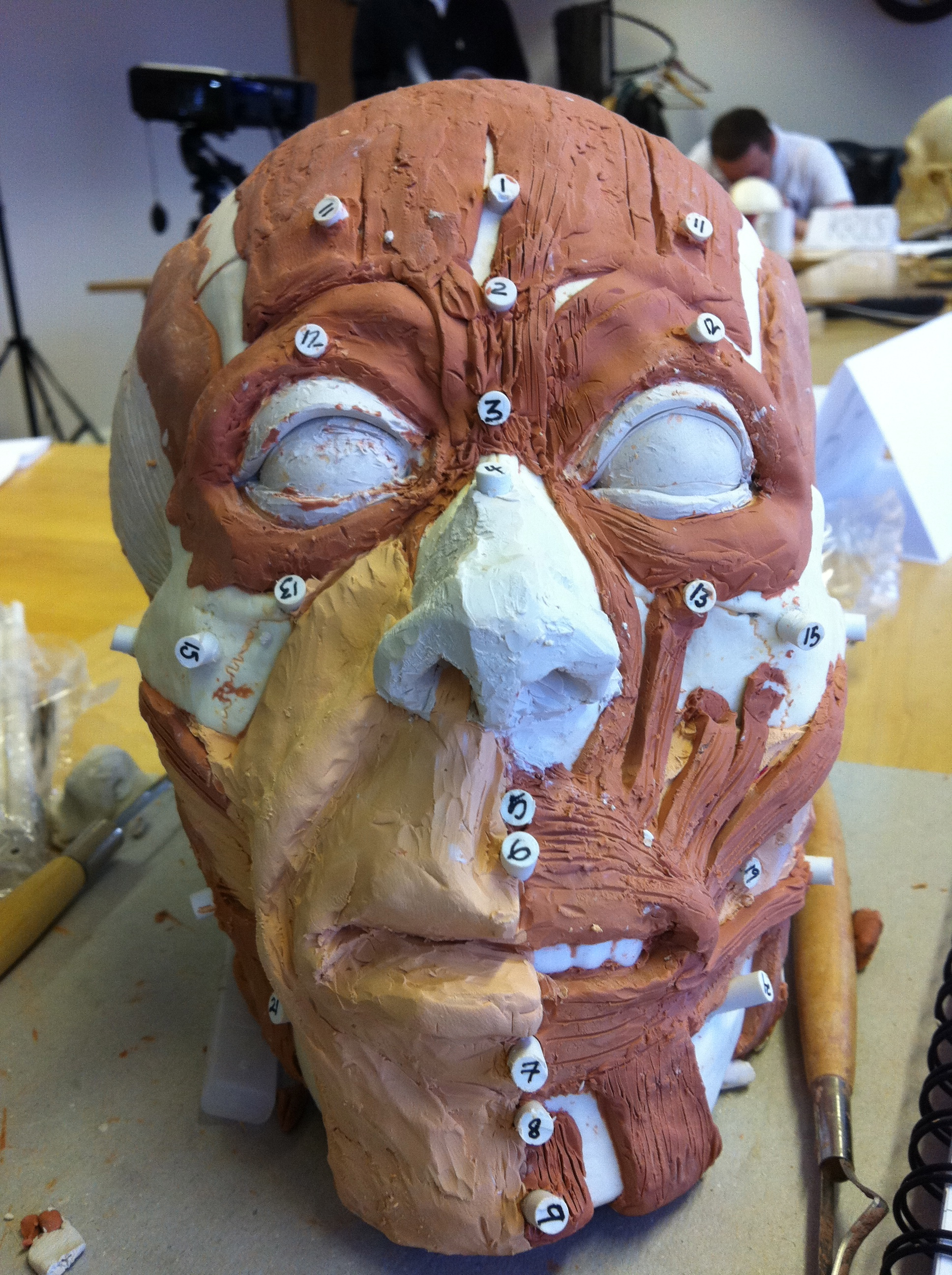 Almost completed. The face now has features and a bit of skin.
