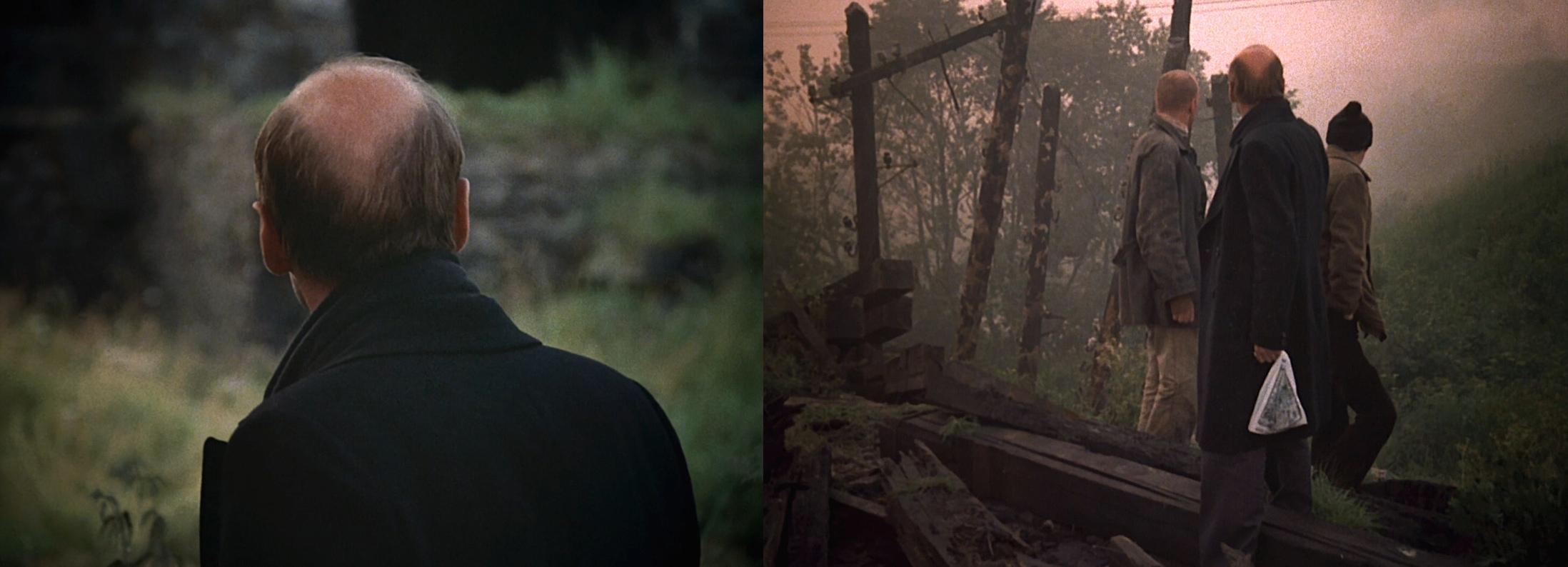 #35 Stalker [1979] - dir. Andrei Tarkovsky