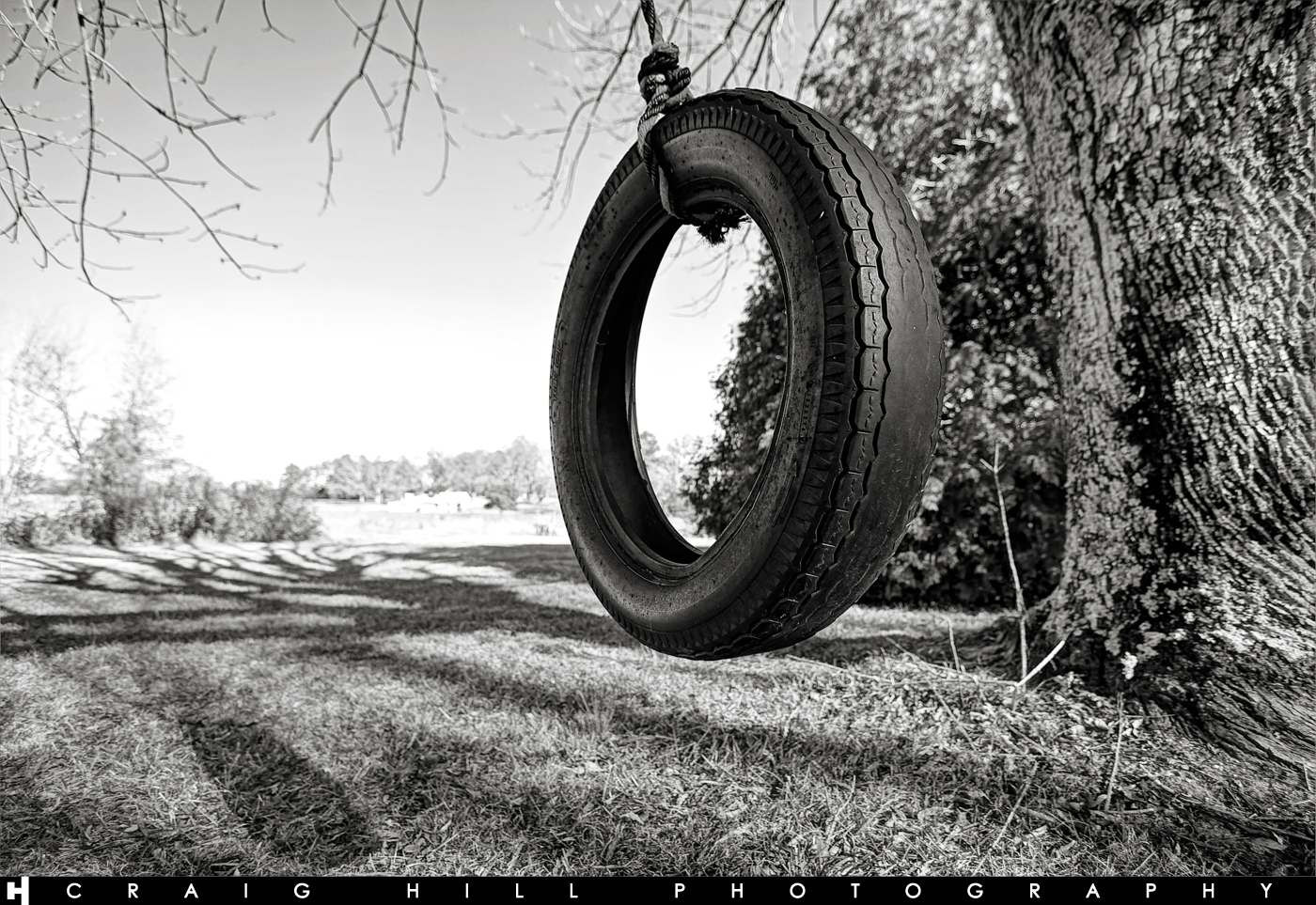 """Old Tire Swing"""