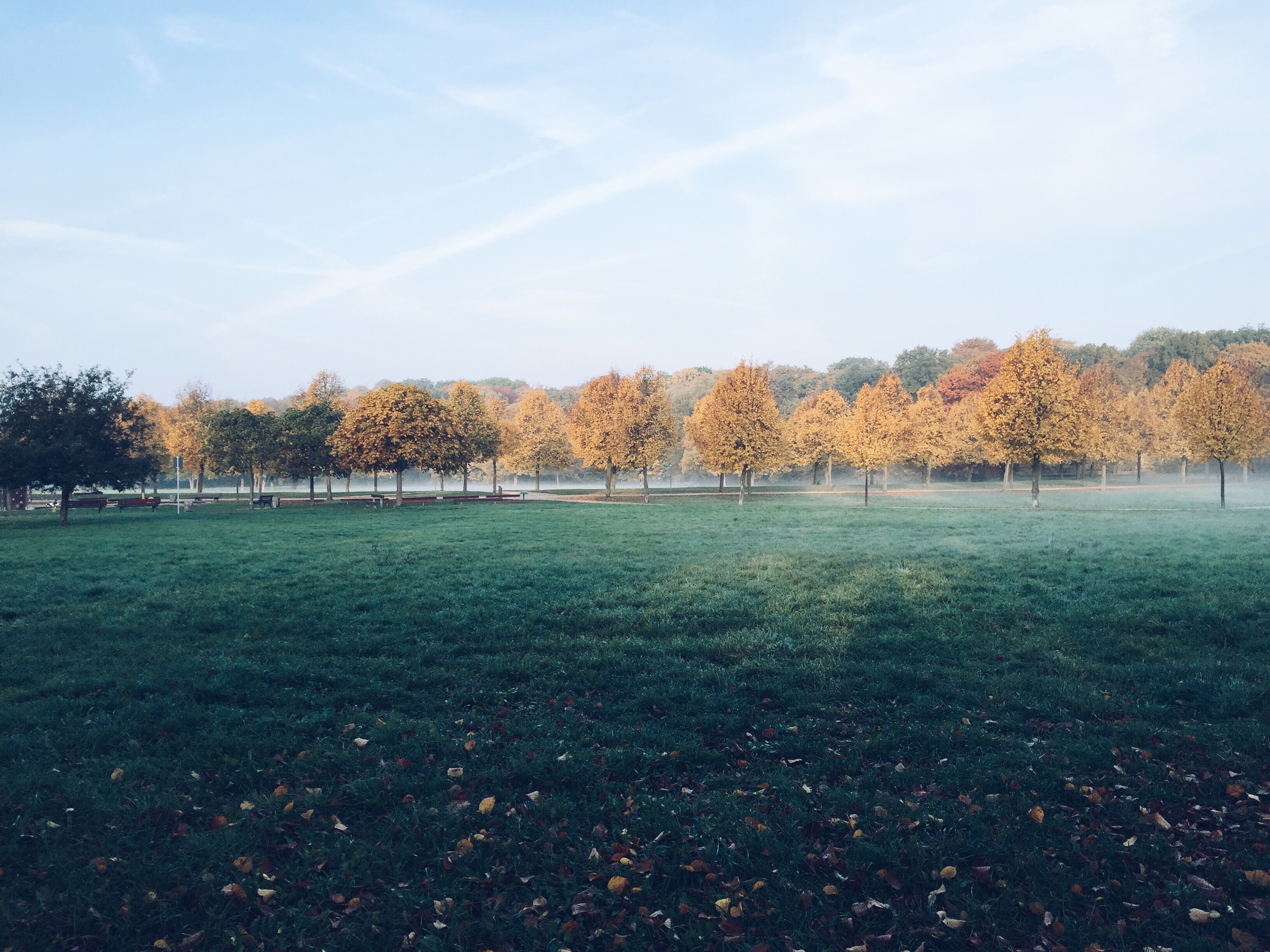 ninotschka autumn impression