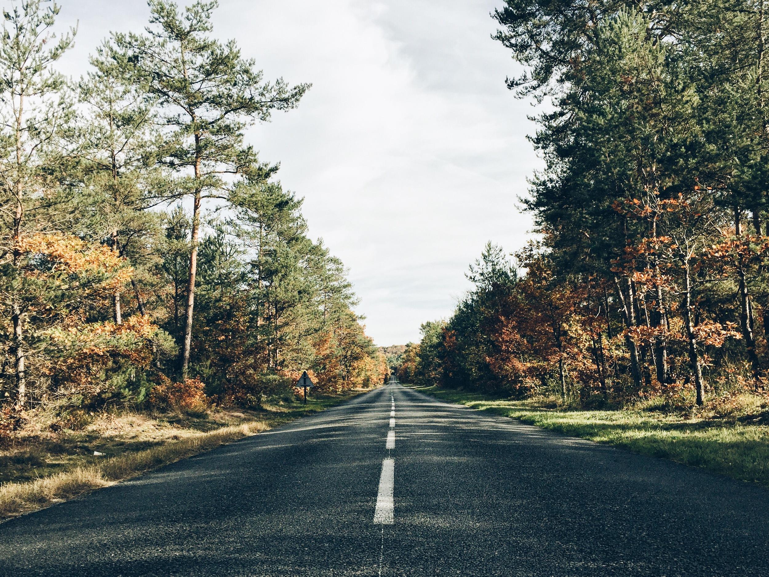 streetview autumn landscape by ninotschka