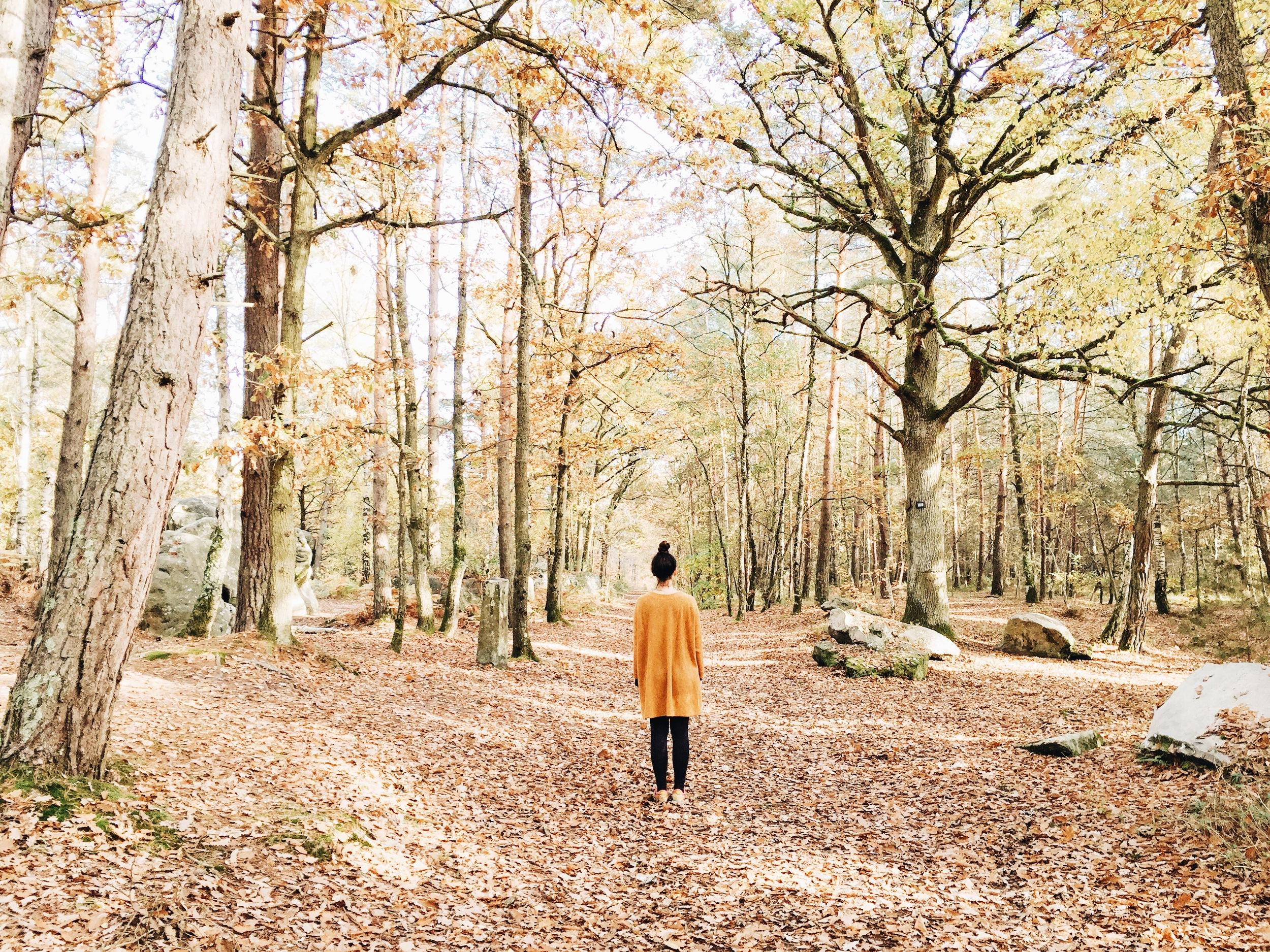 france autumn ninotschka