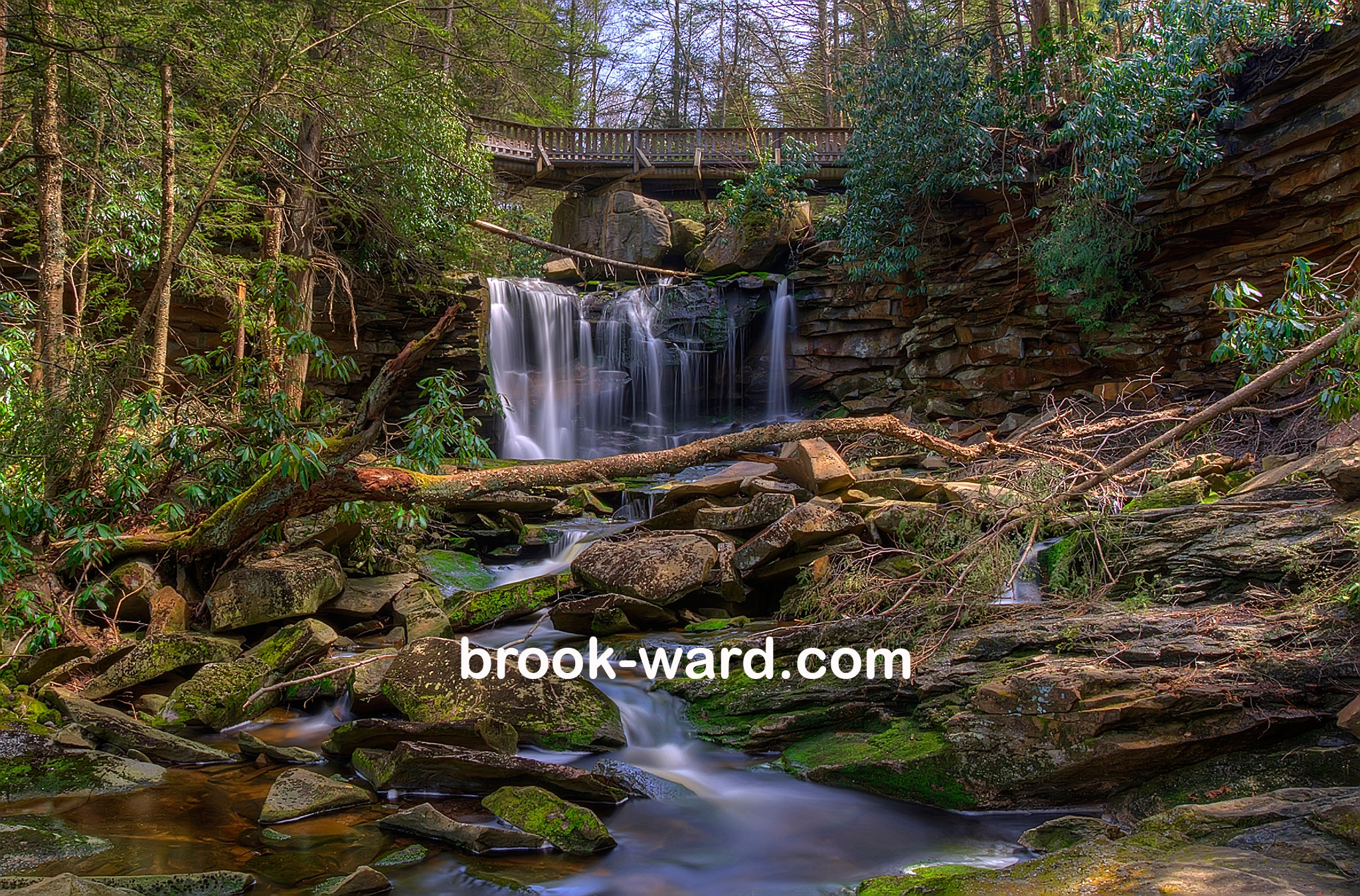 iPad-Blackwater-Falls-2013.jpg