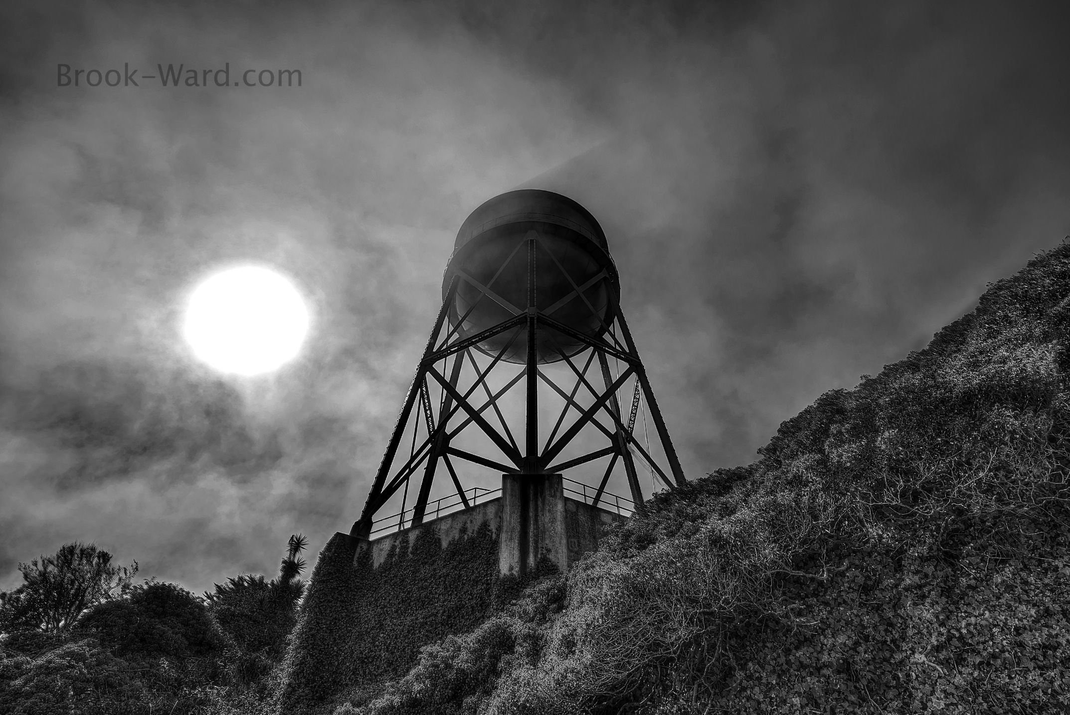 To purchase a print or view the entire print gallery, click the photo above.