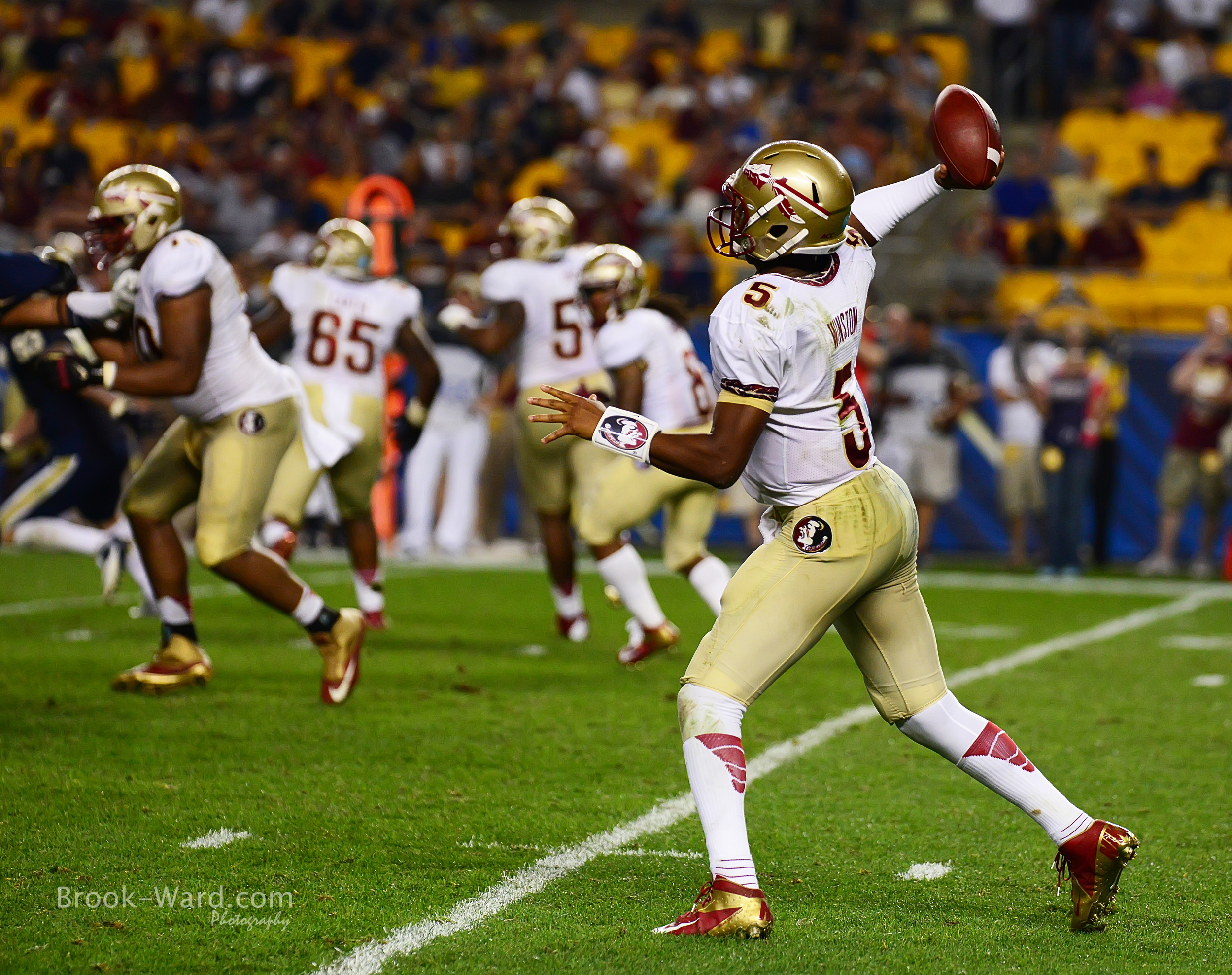 24903 Pitt vs FSU Football 2013.JPG