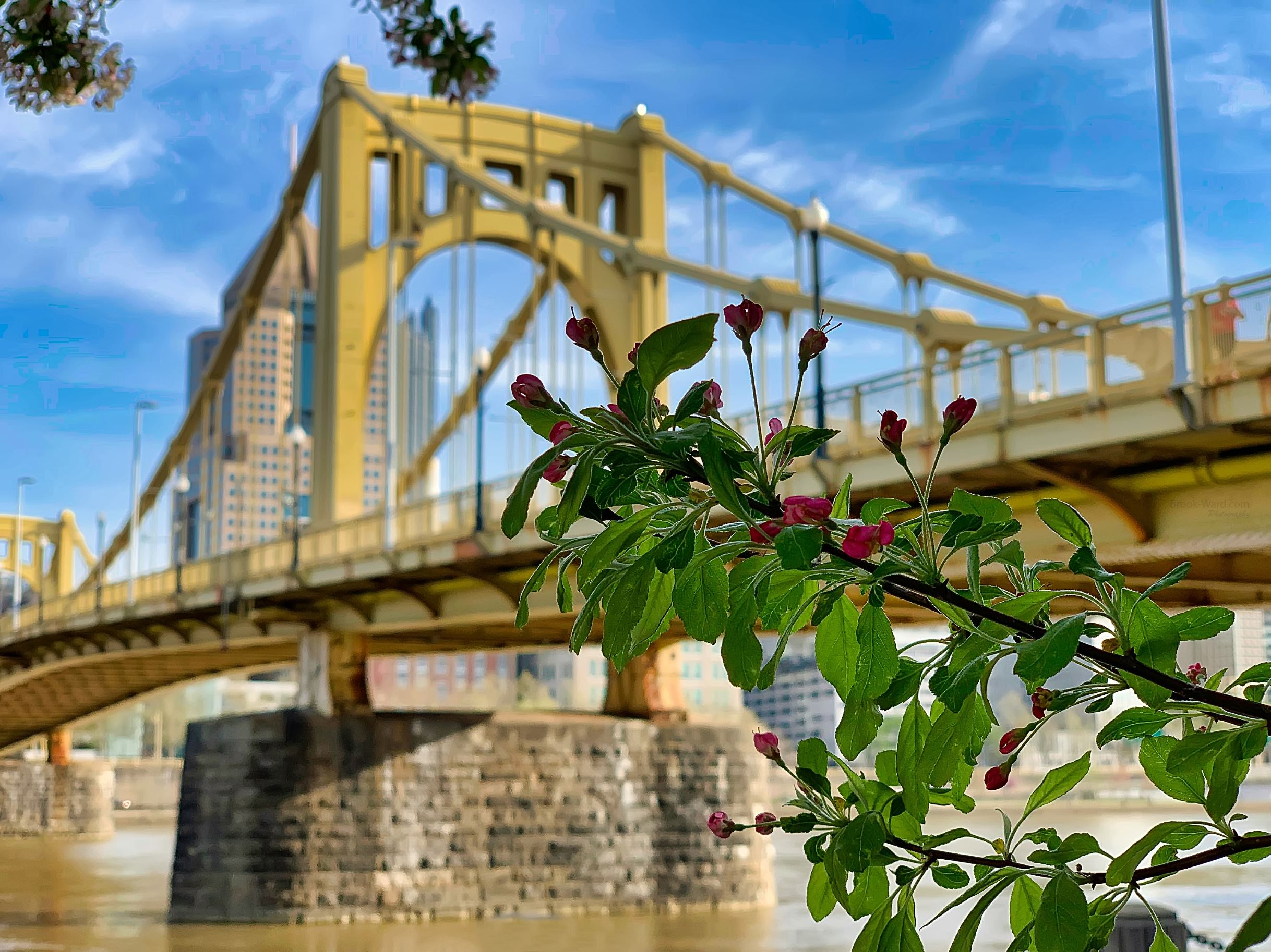 Spring In Pittsburgh