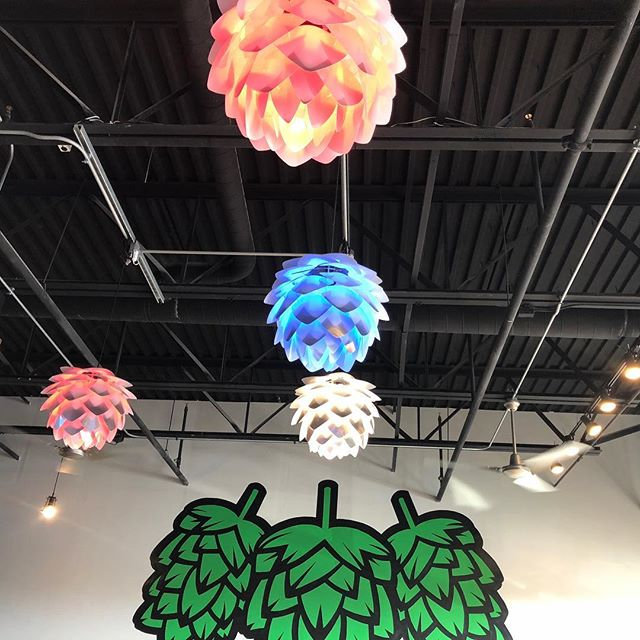 #hops #lights