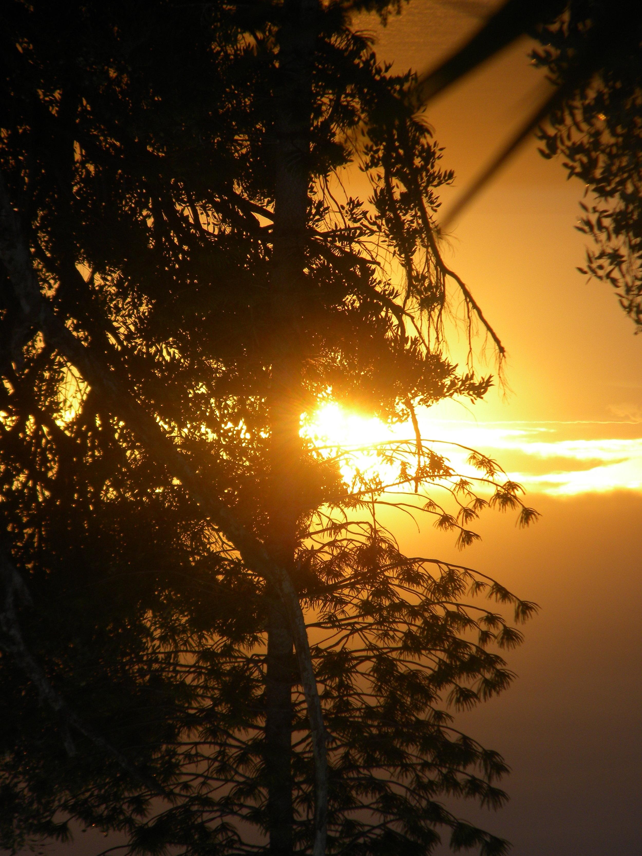 Light of Molokai.JPG