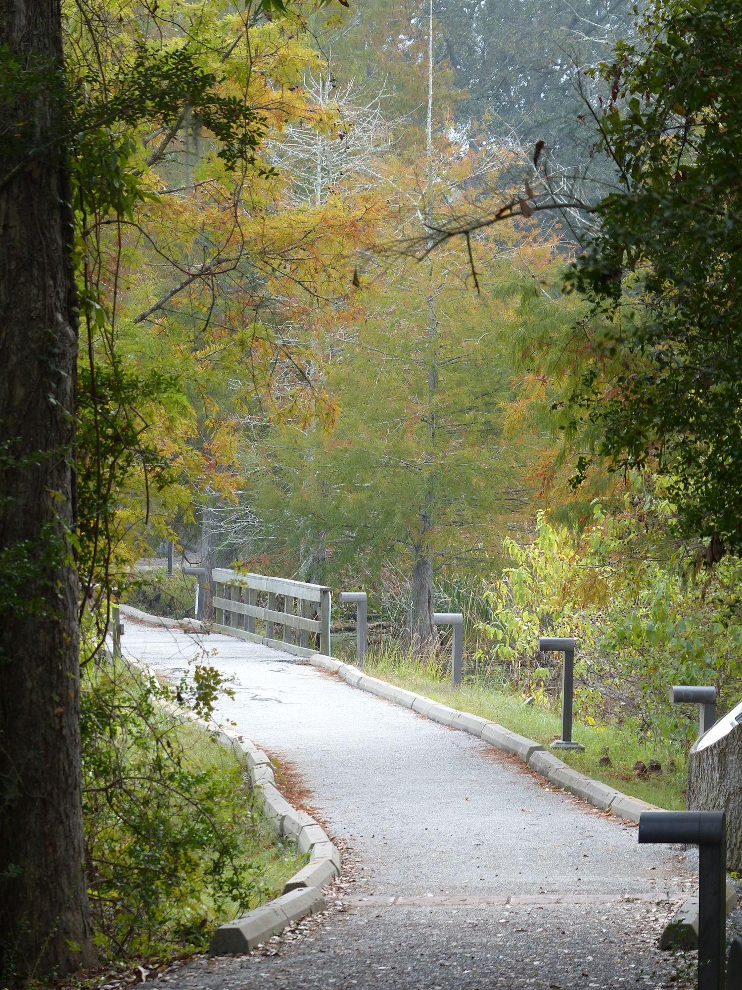 Entrance path to Creekfield Lake.