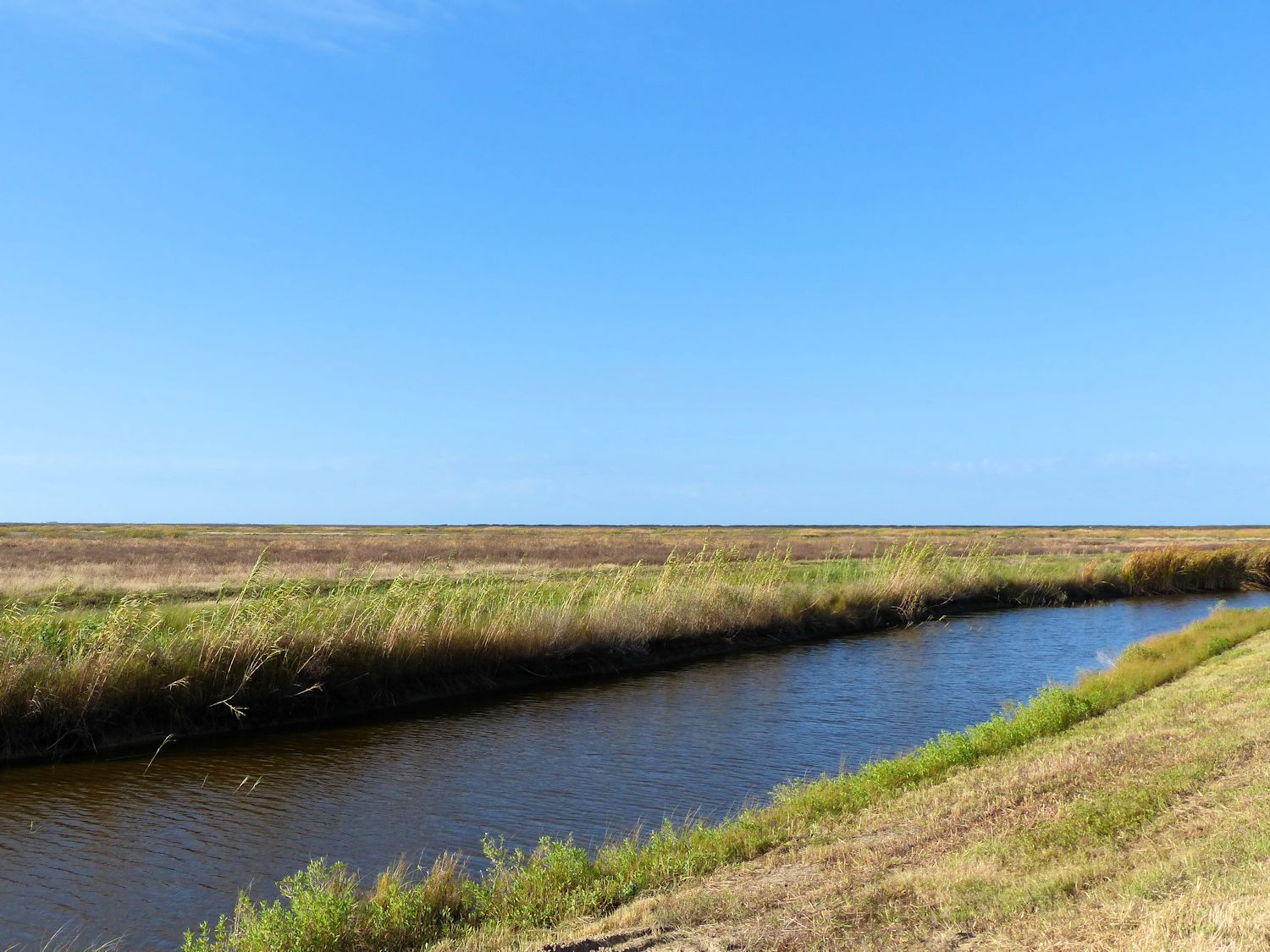 Anahuac Wildlife Refuge is ... absolutely flat